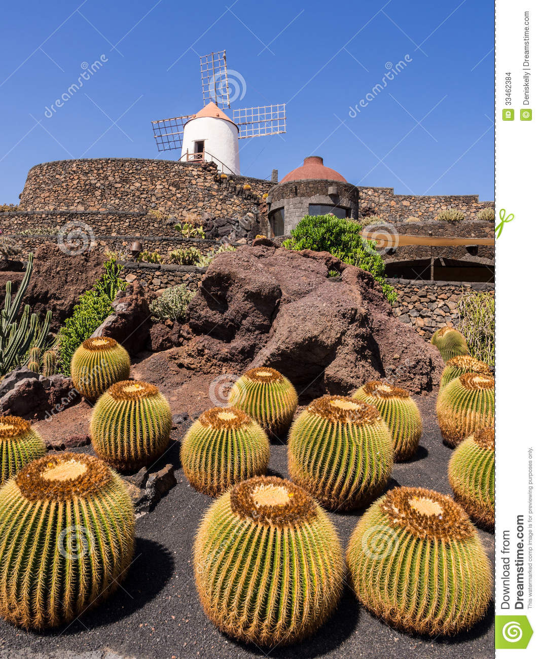 jardin de cactus lanzarote les canaries images stock image 33462384. Black Bedroom Furniture Sets. Home Design Ideas