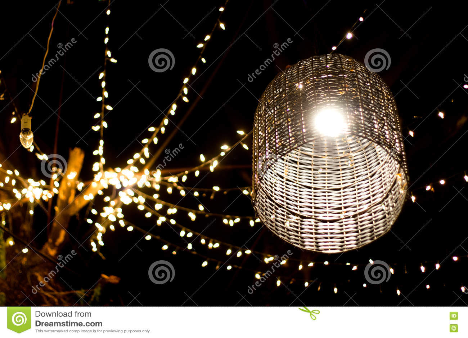 Jardin De Décoration De Lampe Sur L\'arbre à La Nuit Image stock ...