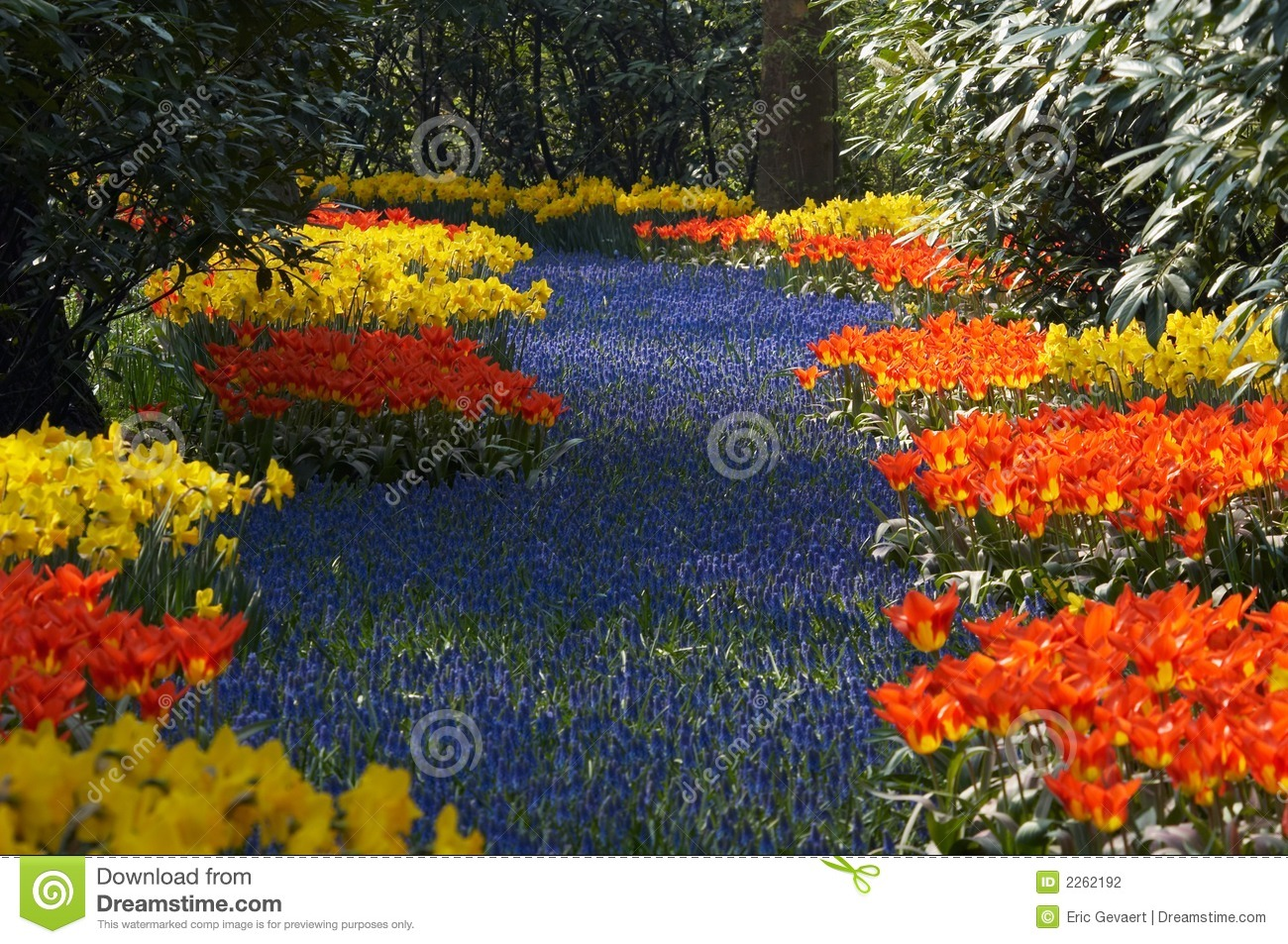 Jardin de fleur au printemps photo stock image du for Catalogue fleurs de jardin