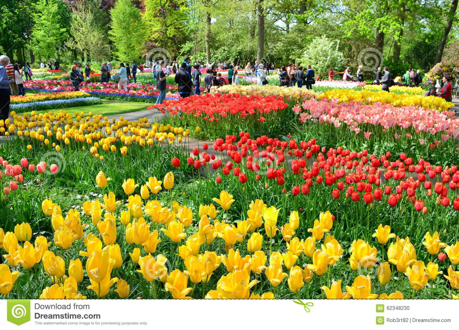 Jardin de keukenhof pays bas fleurs et fleur color es for Jardin keukenhof