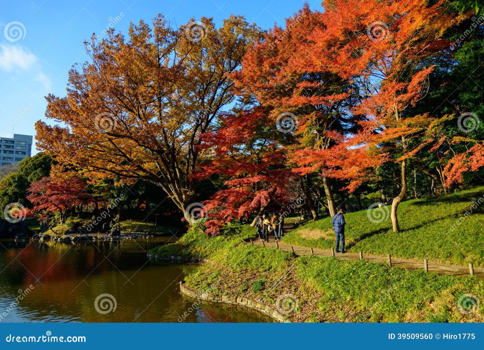 jardin de koishikawa korakuen en automne tokyo image. Black Bedroom Furniture Sets. Home Design Ideas