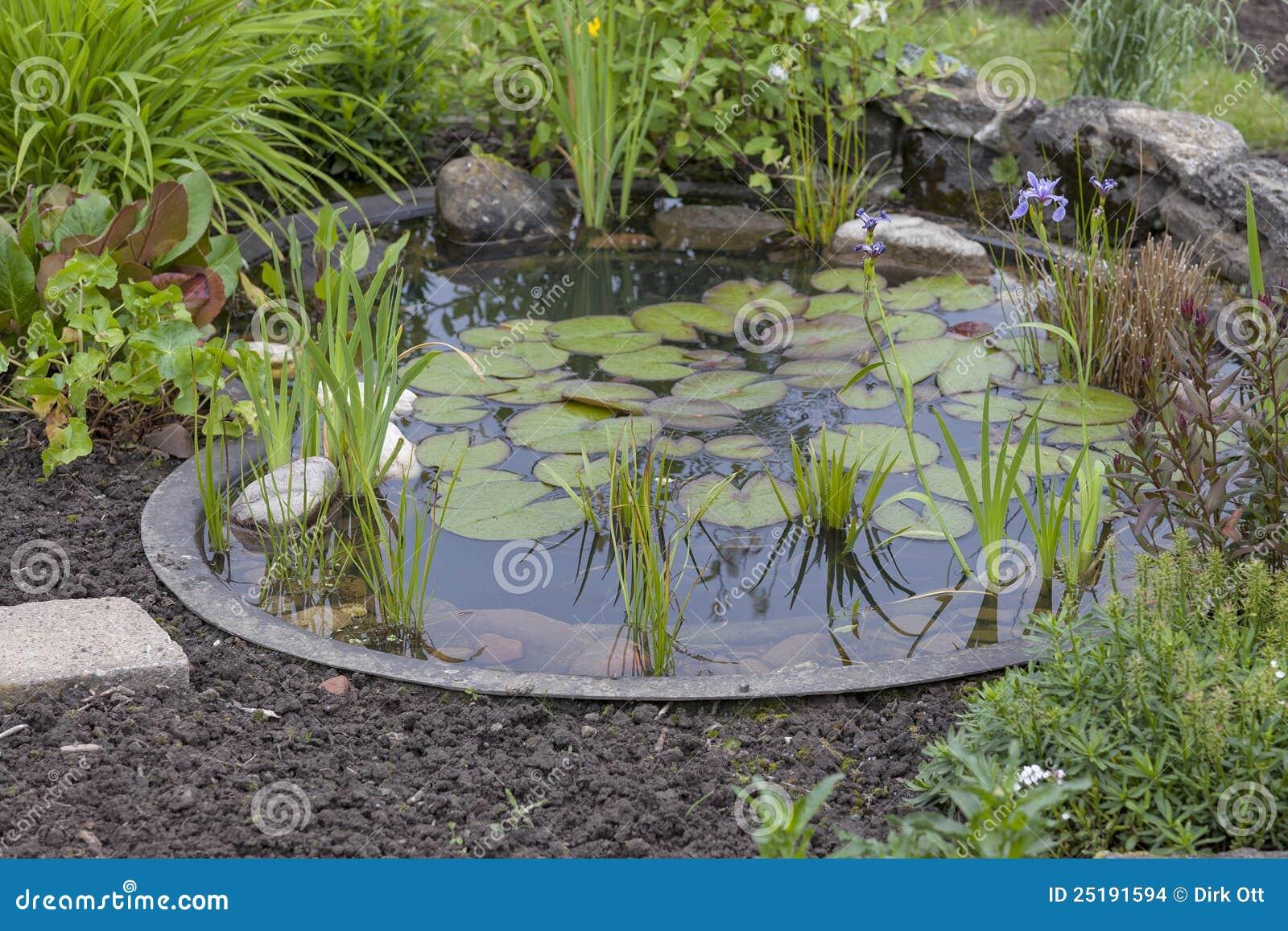 Jardin de maison avec l 39 tang images stock image 25191594 for Achat maison avec etang