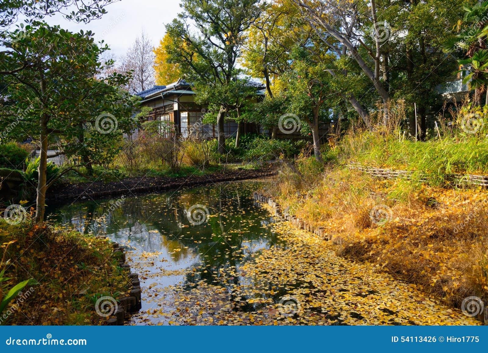 jardin de mukojima hyakkaen en automne tokyo photo stock. Black Bedroom Furniture Sets. Home Design Ideas