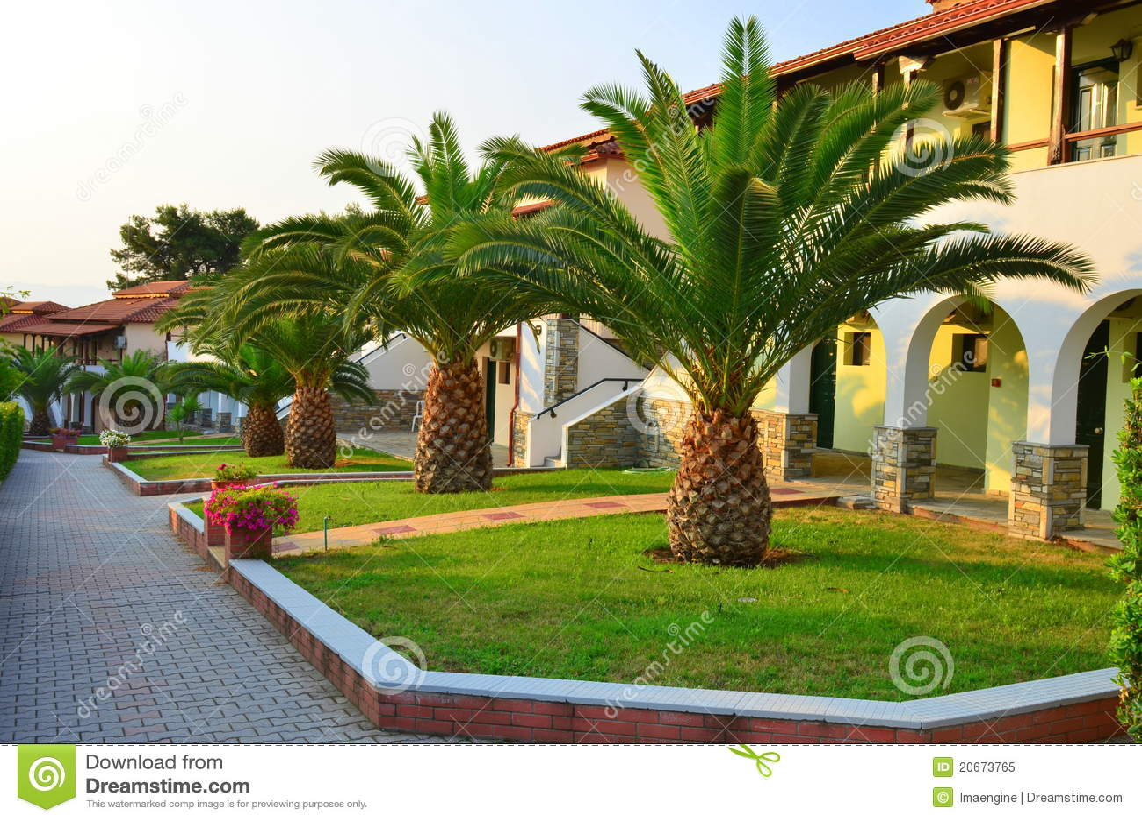jardin de palmiers d 39 une ressource de villas photo libre de droits image 20673765. Black Bedroom Furniture Sets. Home Design Ideas