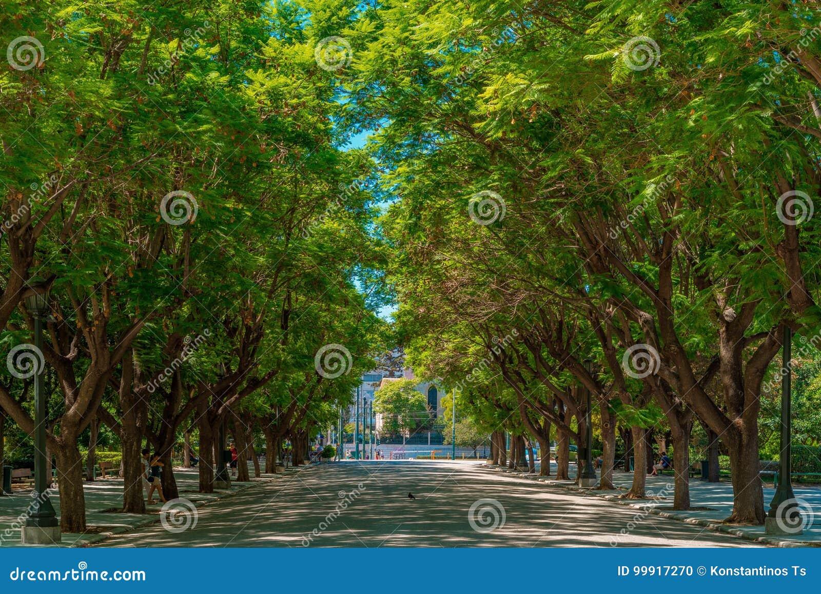Jardin de ressortissant d Athènes