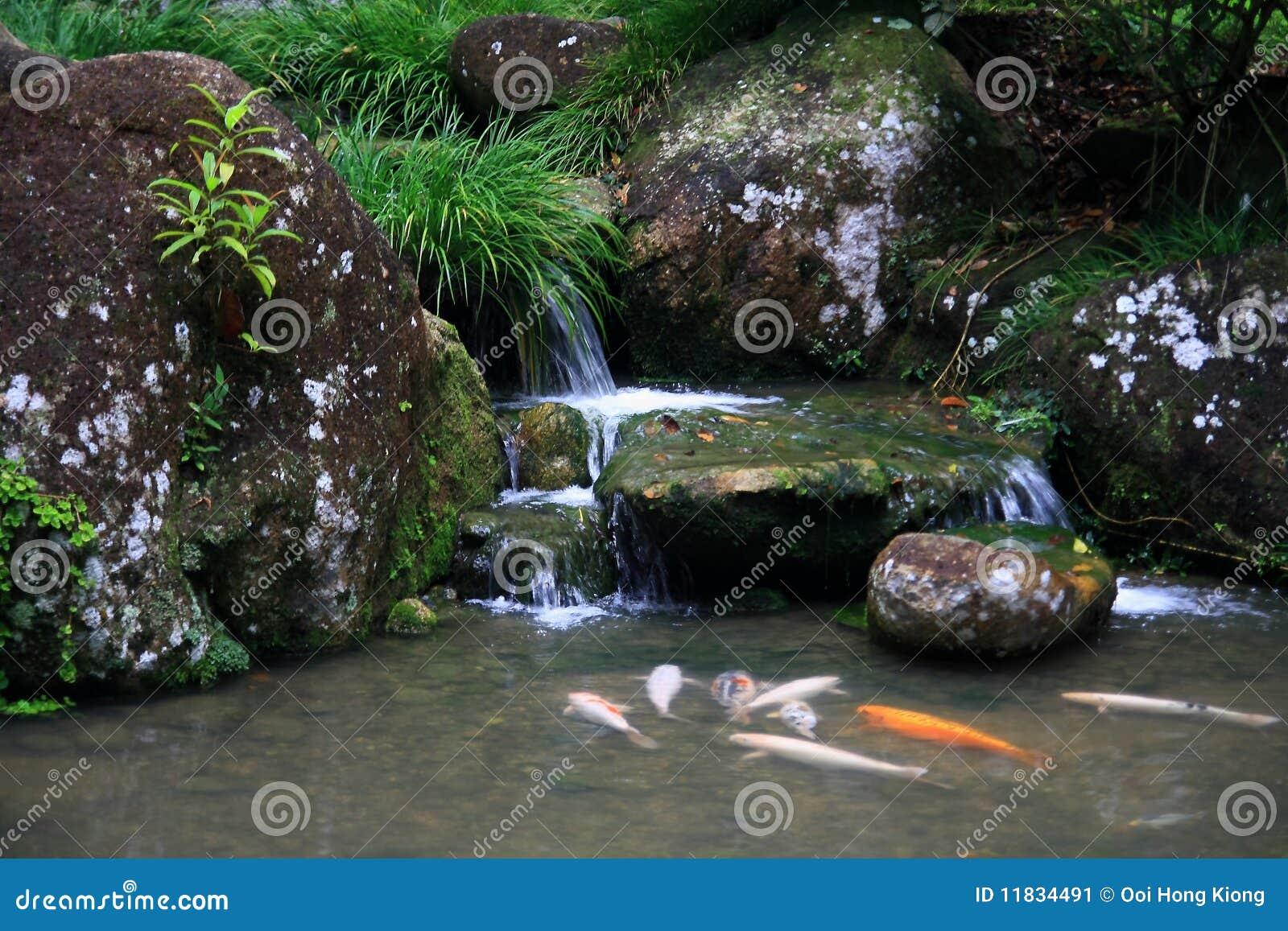 Jardin de th japonais cascade criture ligne par for Conception jardin en ligne