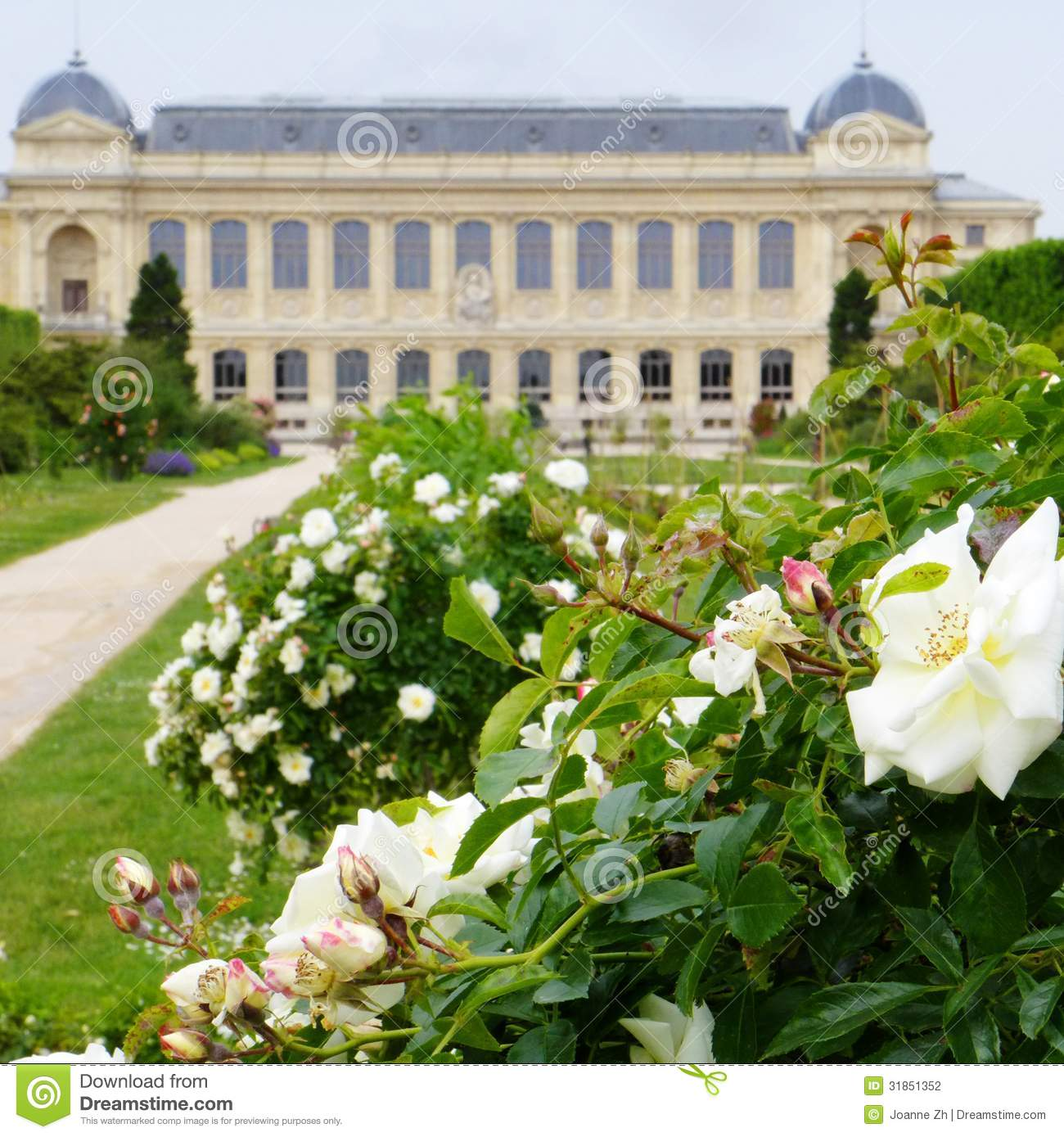Jardin des plantes paris france stock photo image for Plante ornementale des jardins