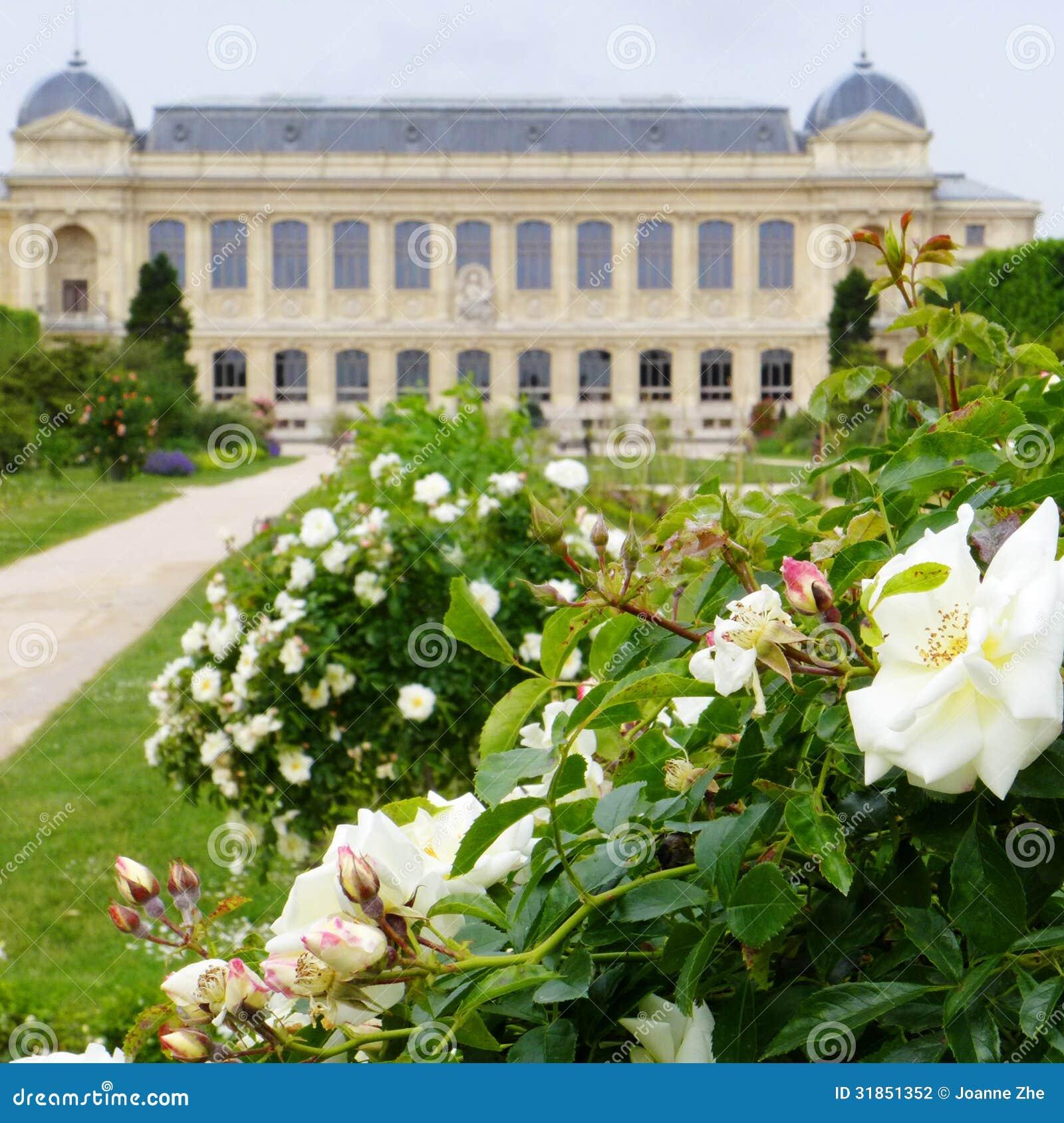 Jardin des plantes paris france stock photography for Paris jardin plantes