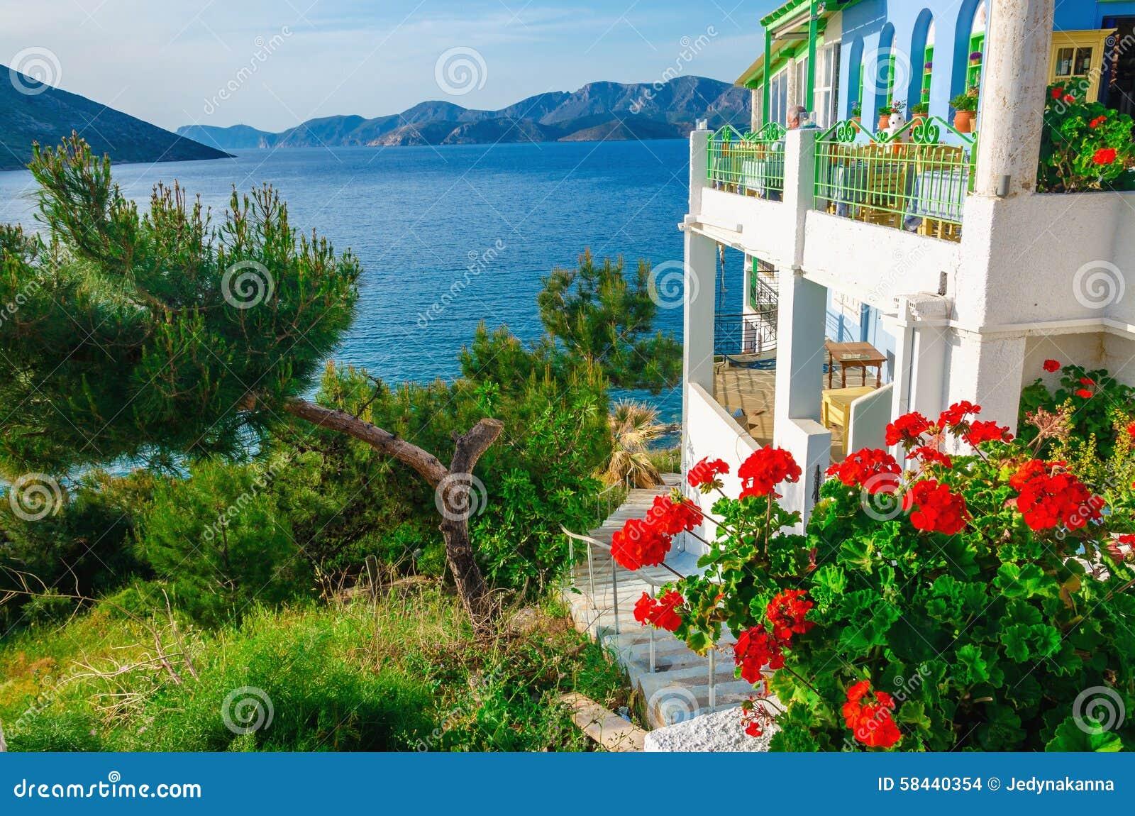 Jardin et terrasse de la maison grecque avec les fleurs for Jardin de fleurs a couper