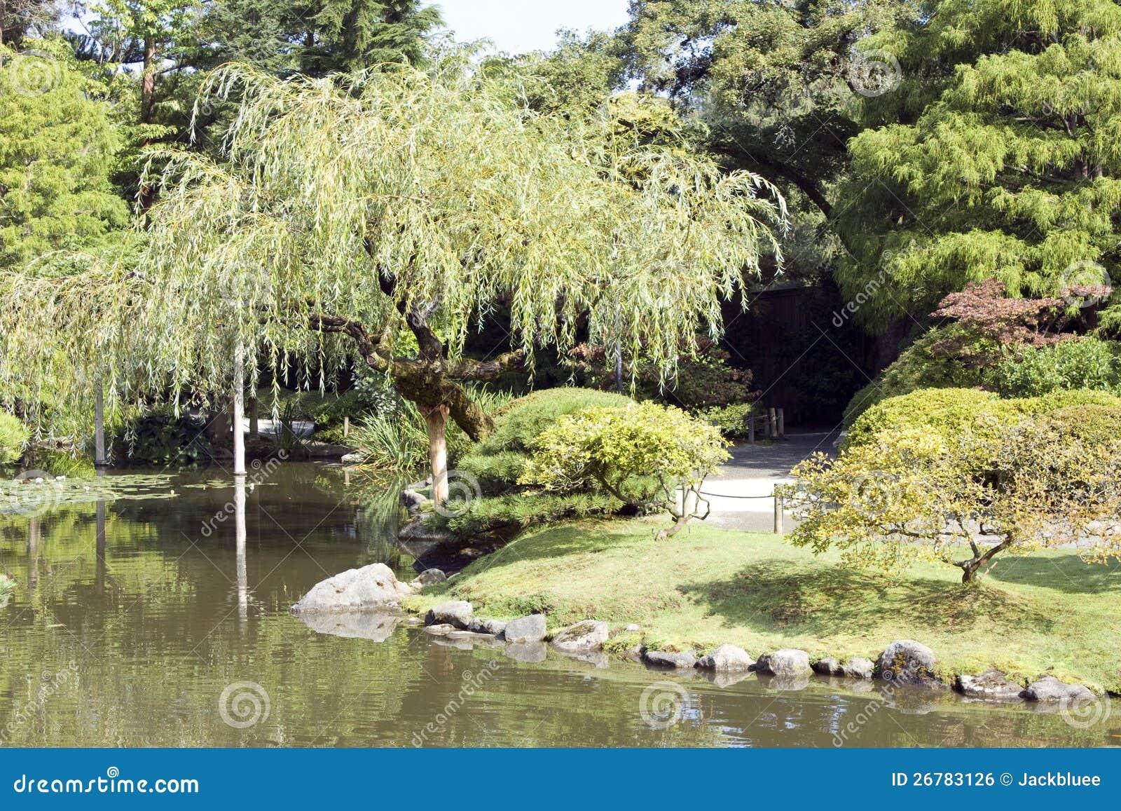 Jardin japonais avec du charme image libre de droits for Beaux arbres de jardin