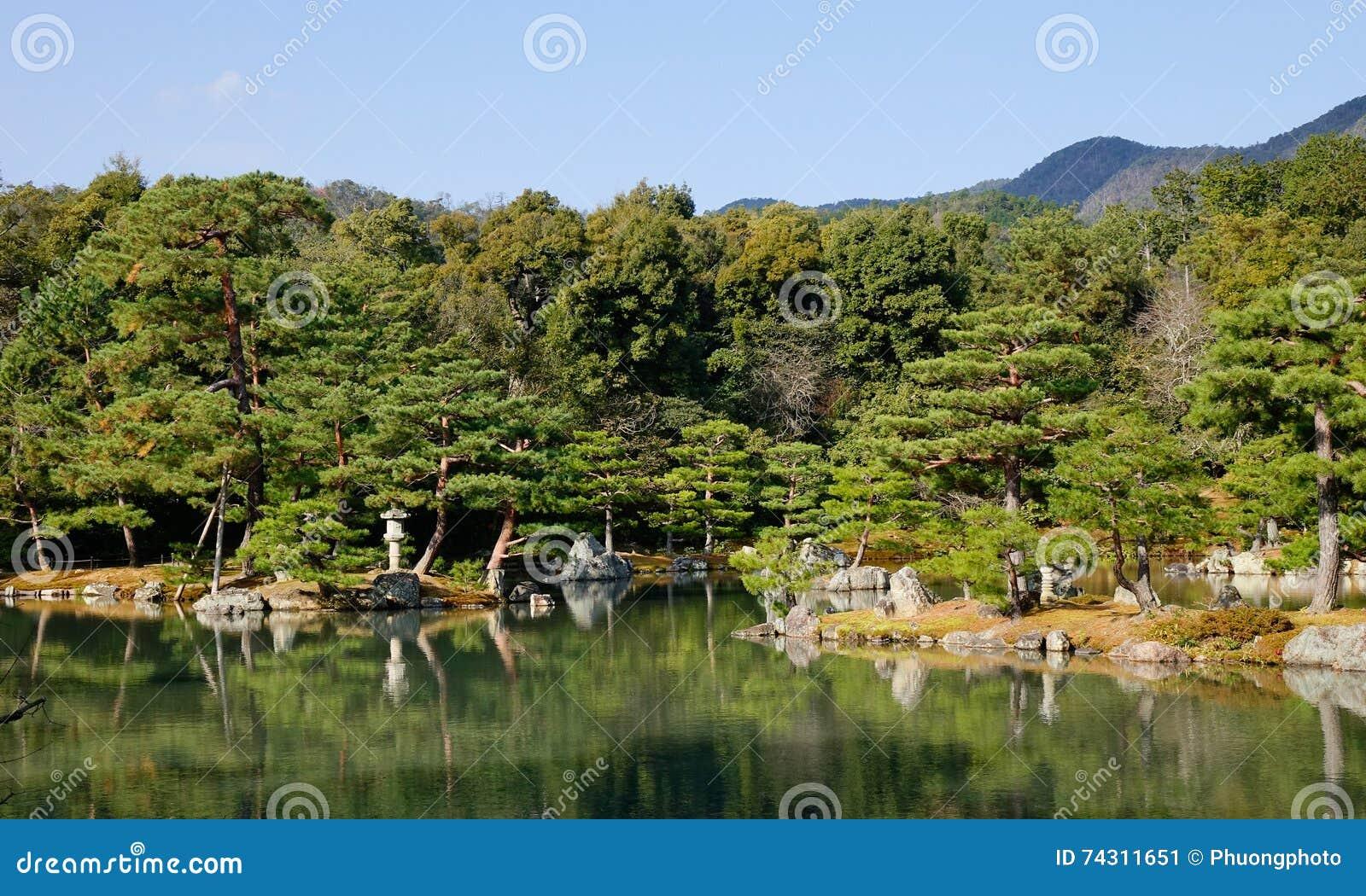 Construction Jardin Japonais jardin japonais avec le lac et les pins image stock - image du