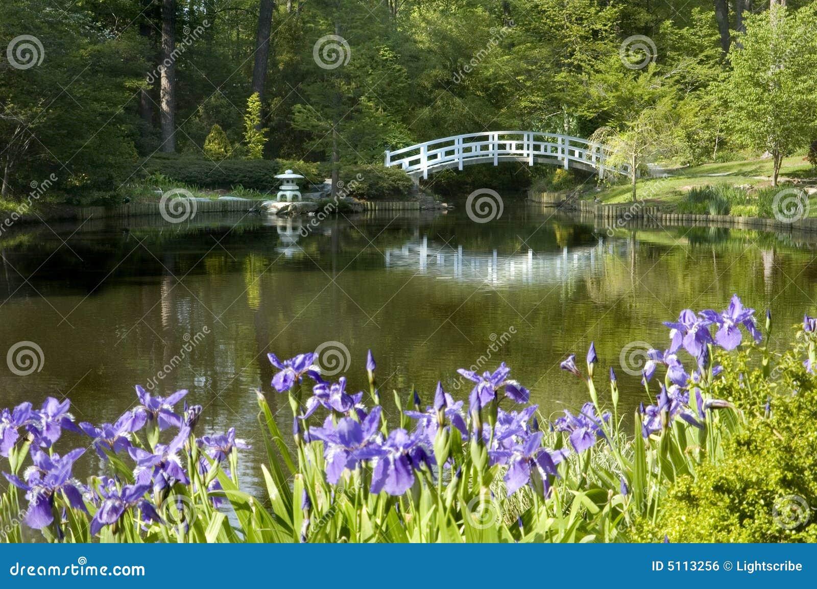 Jardin japonais de zen image libre de droits image 5113256 for Plan jardin japonais