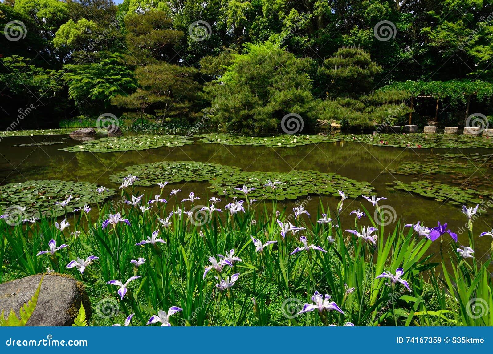 Jardin Japonais Fleurissant De Tombeau De Heian Kyoto Japon Image