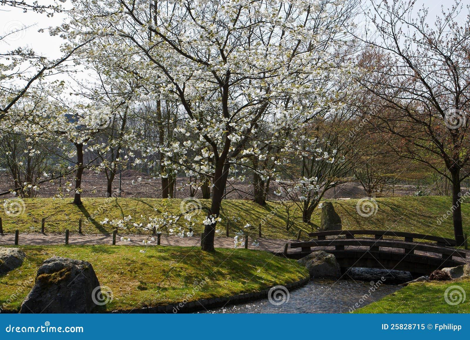 Jardin japonais hasselt belgique photo libre de droits for Jardin belgique