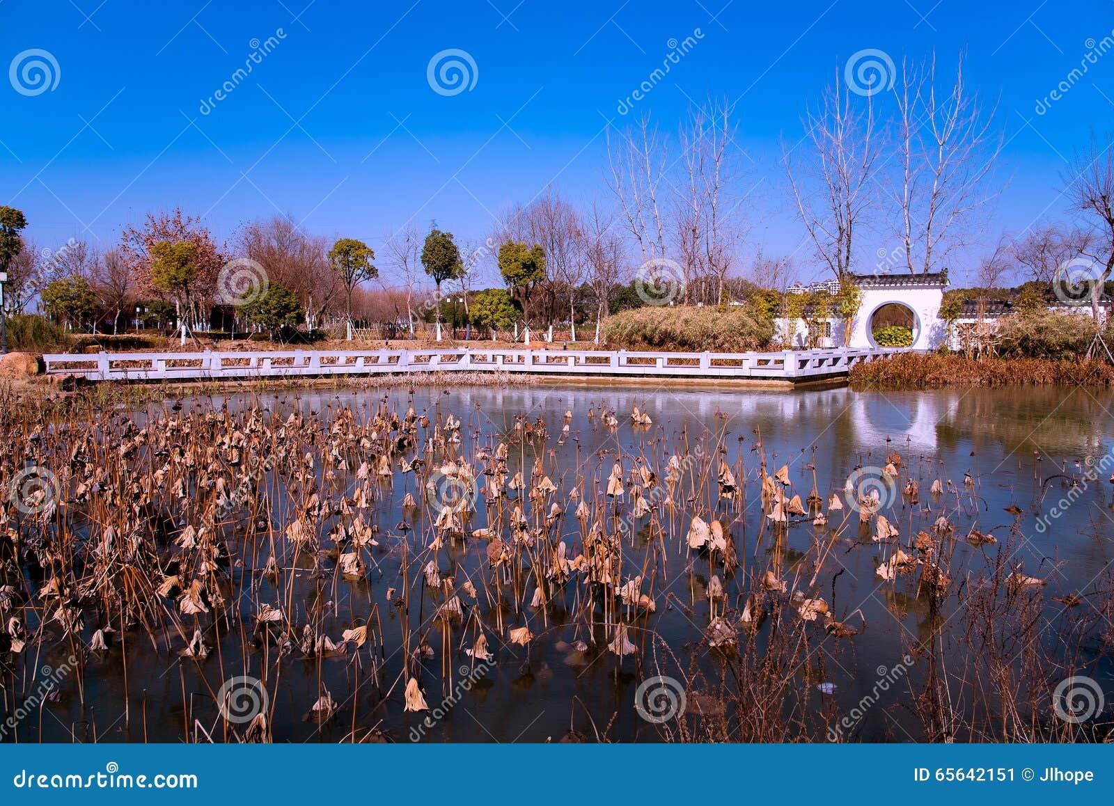 Jardin, lac et loutus