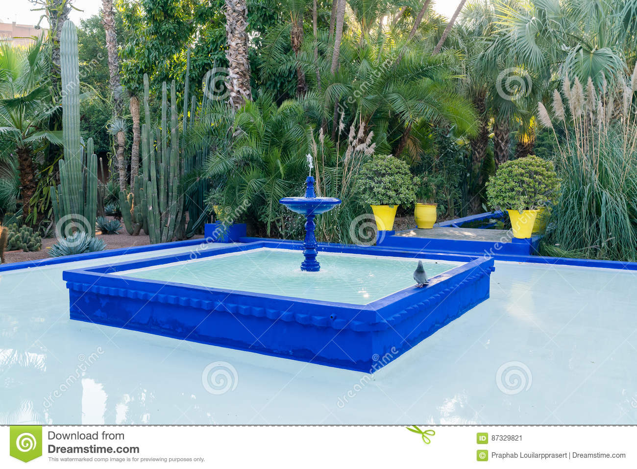Jardin Majorelle By Yves Saint Laurent Stock Image Image Of