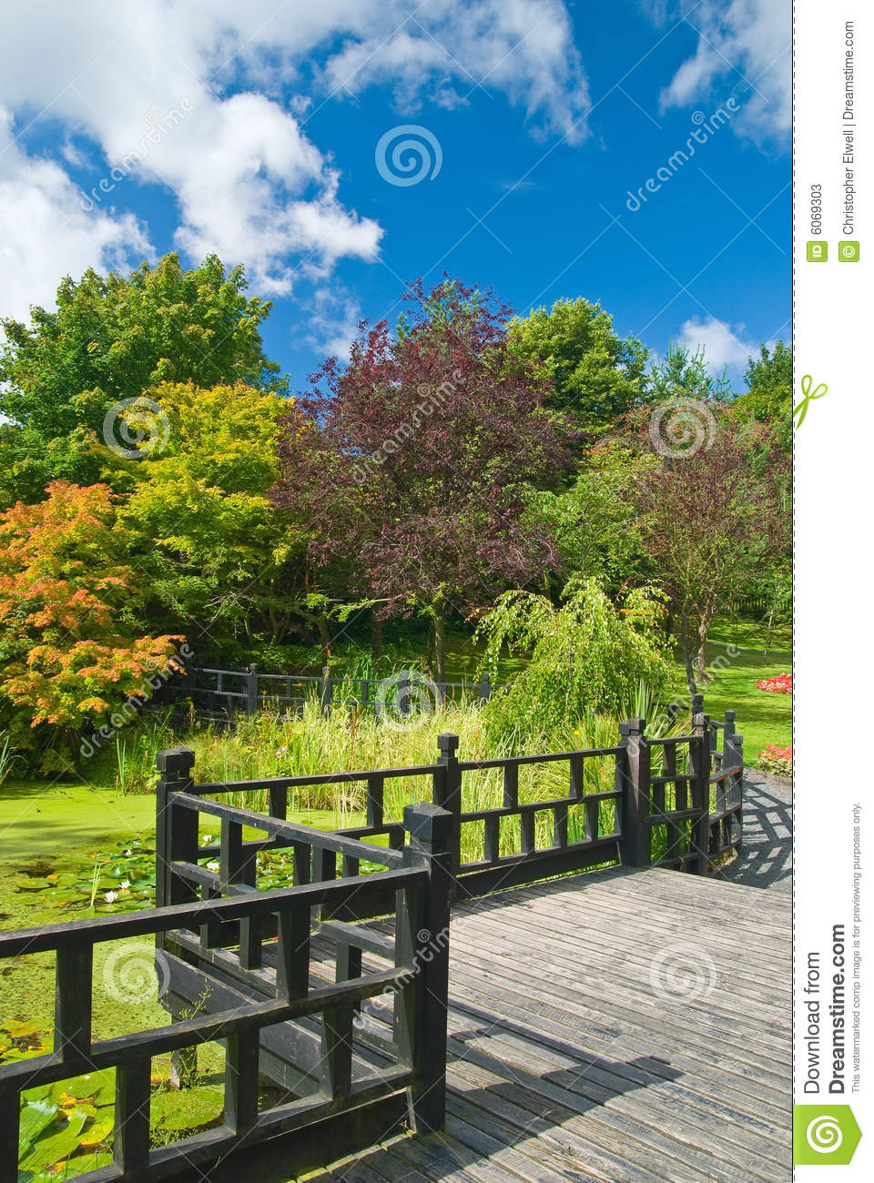 Jardin oriental image stock image du path voie lilly for Jardin oriental