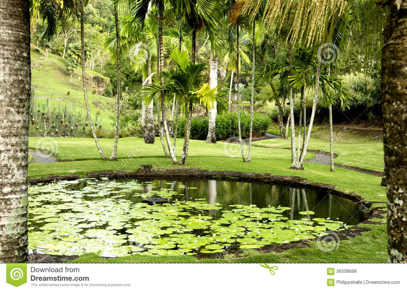 Jardin pittoresque d 39 anse latouche d 39 habitation martinique for Jardin pittoresque