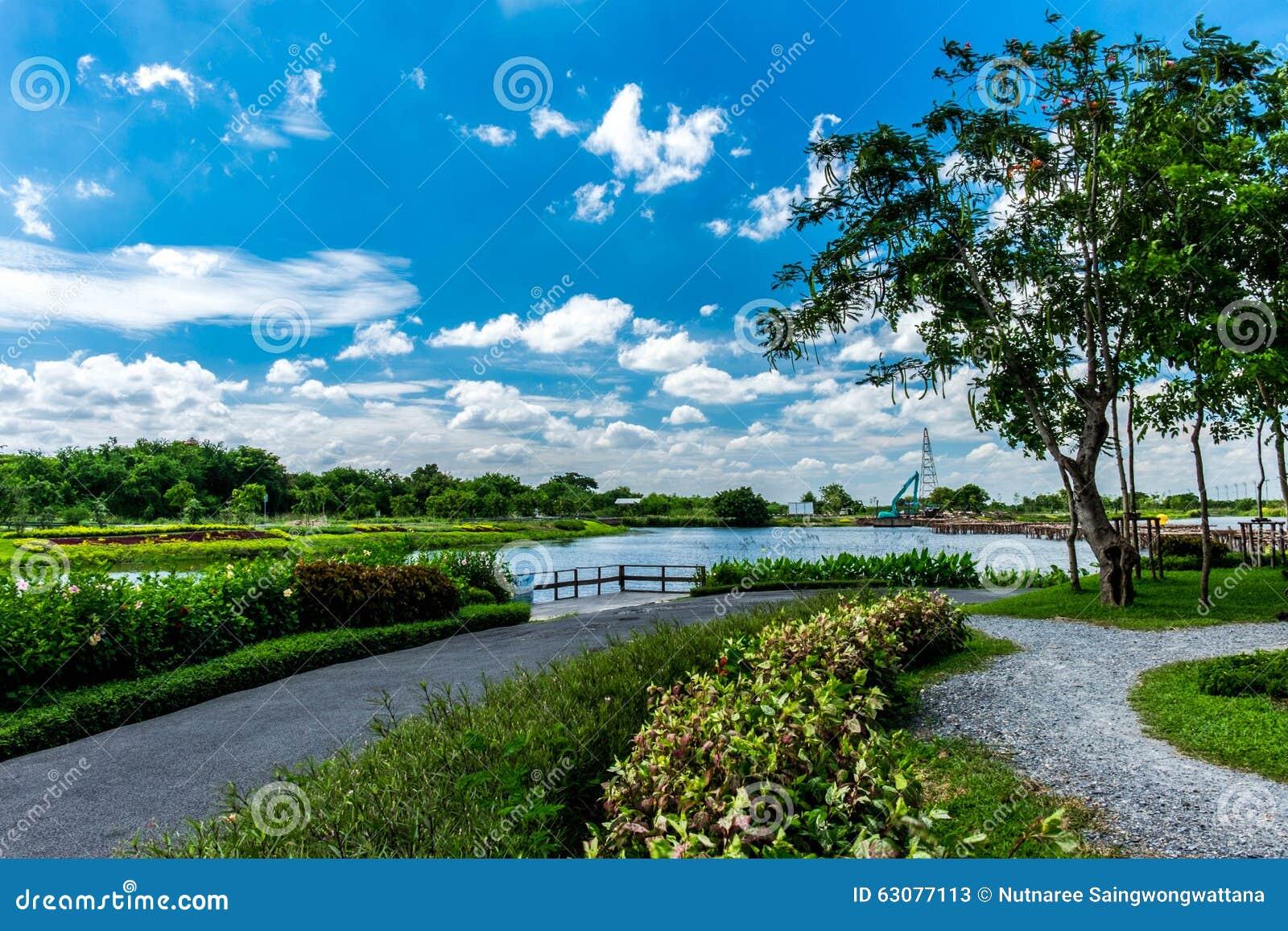 Download Jardin Public à Bangkok De La Thaïlande Image stock - Image du fleuve, sauvage: 63077113