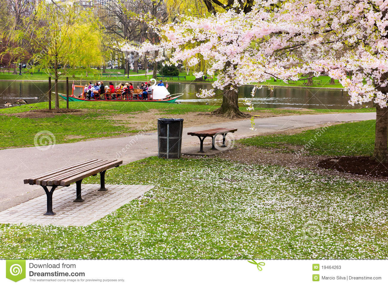 Jardin public de boston au printemps photo stock ditorial for Jardin public