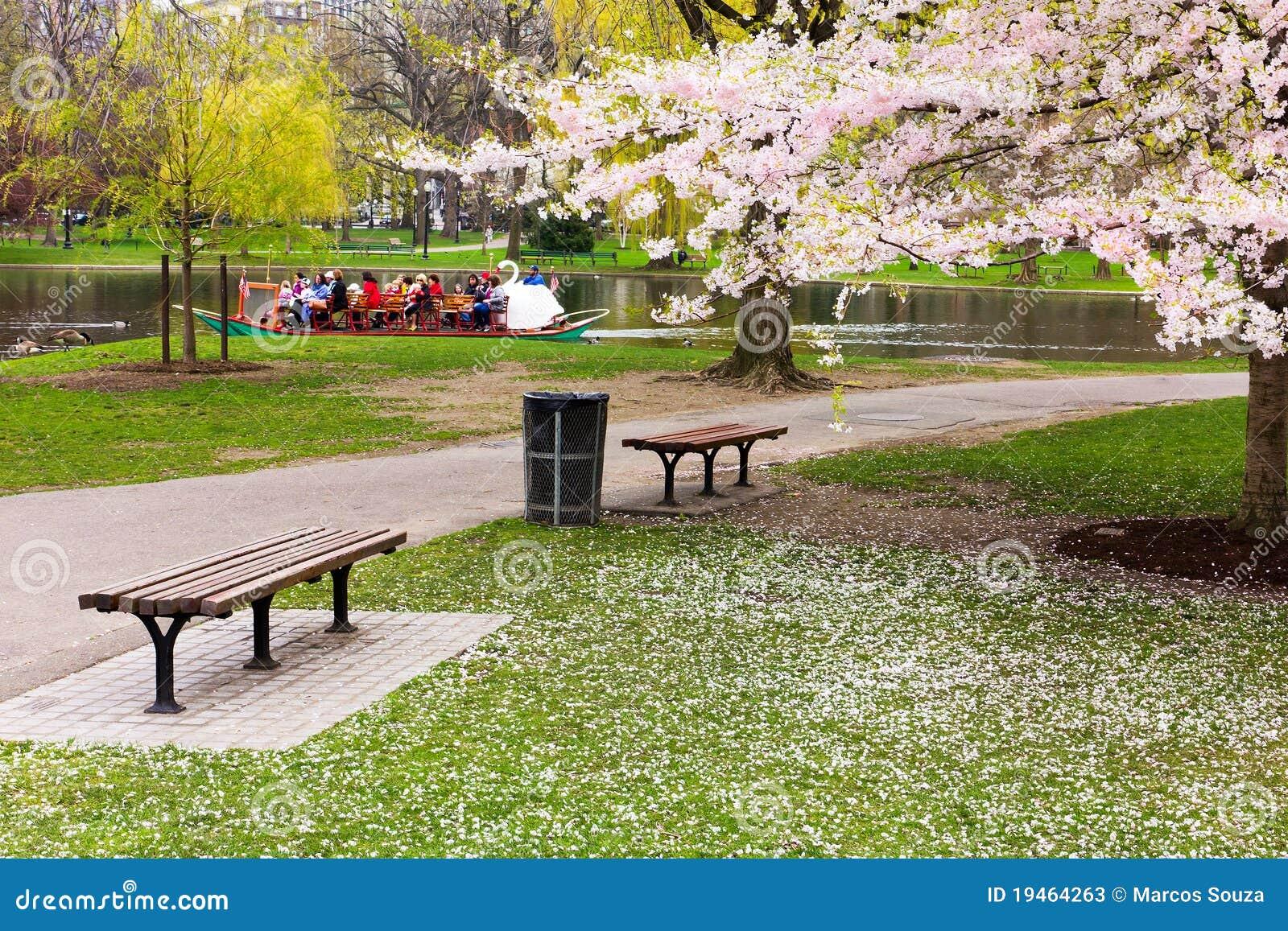 Jardin public de boston au printemps photo stock ditorial for Jardin public