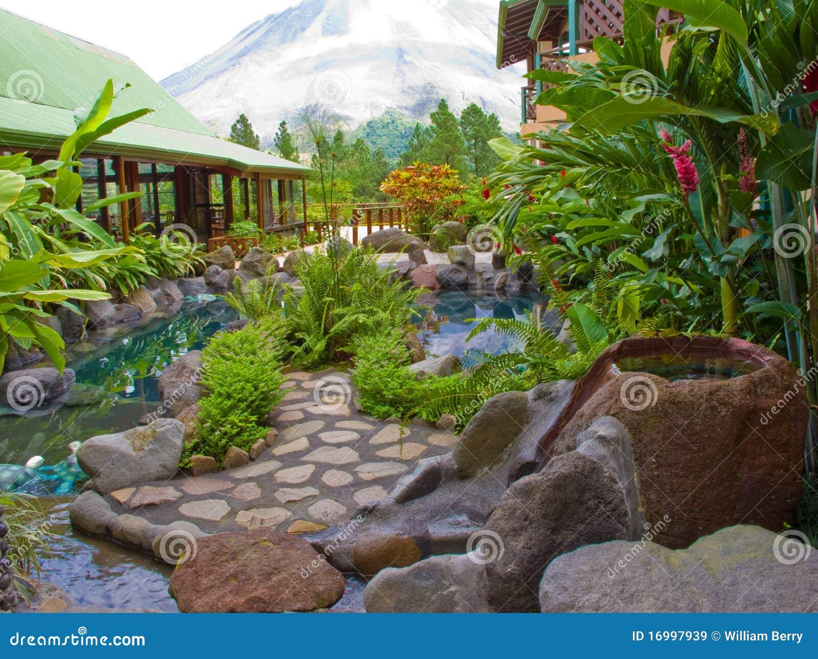 Jardin tropical images libres de droits image 16997939 for Jardin tropical