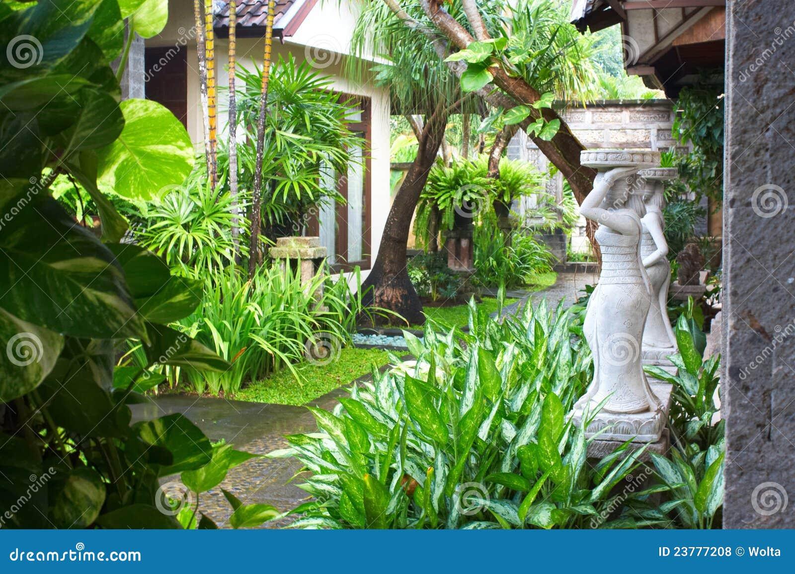 Jardin tropical photos libres de droits image 23777208 for Jardin tropical