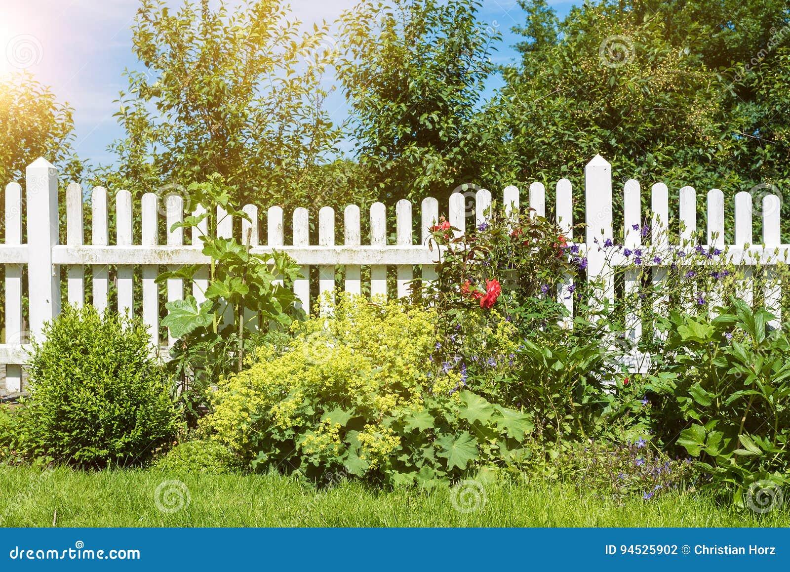 Jardin Vert Luxuriant Avec La Barrière En Bois Blanche Photo stock ...