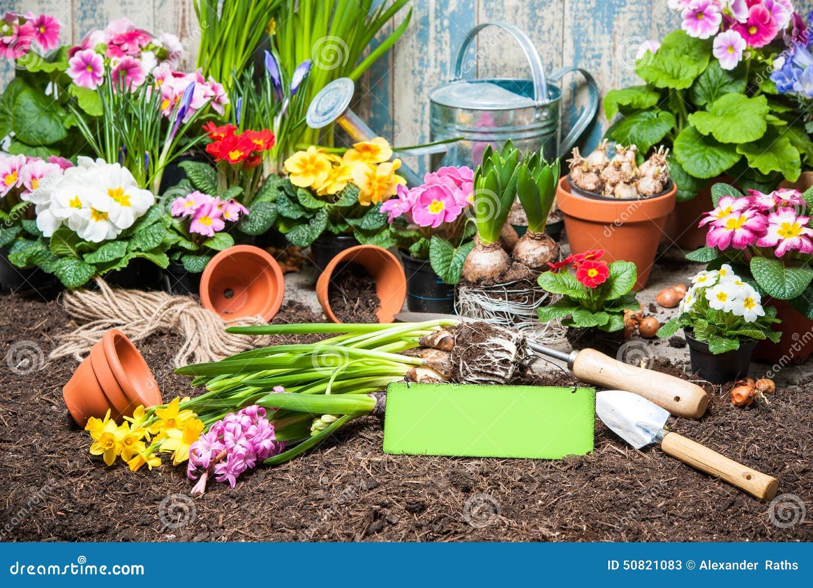 jardinage photo stock image 50821083. Black Bedroom Furniture Sets. Home Design Ideas