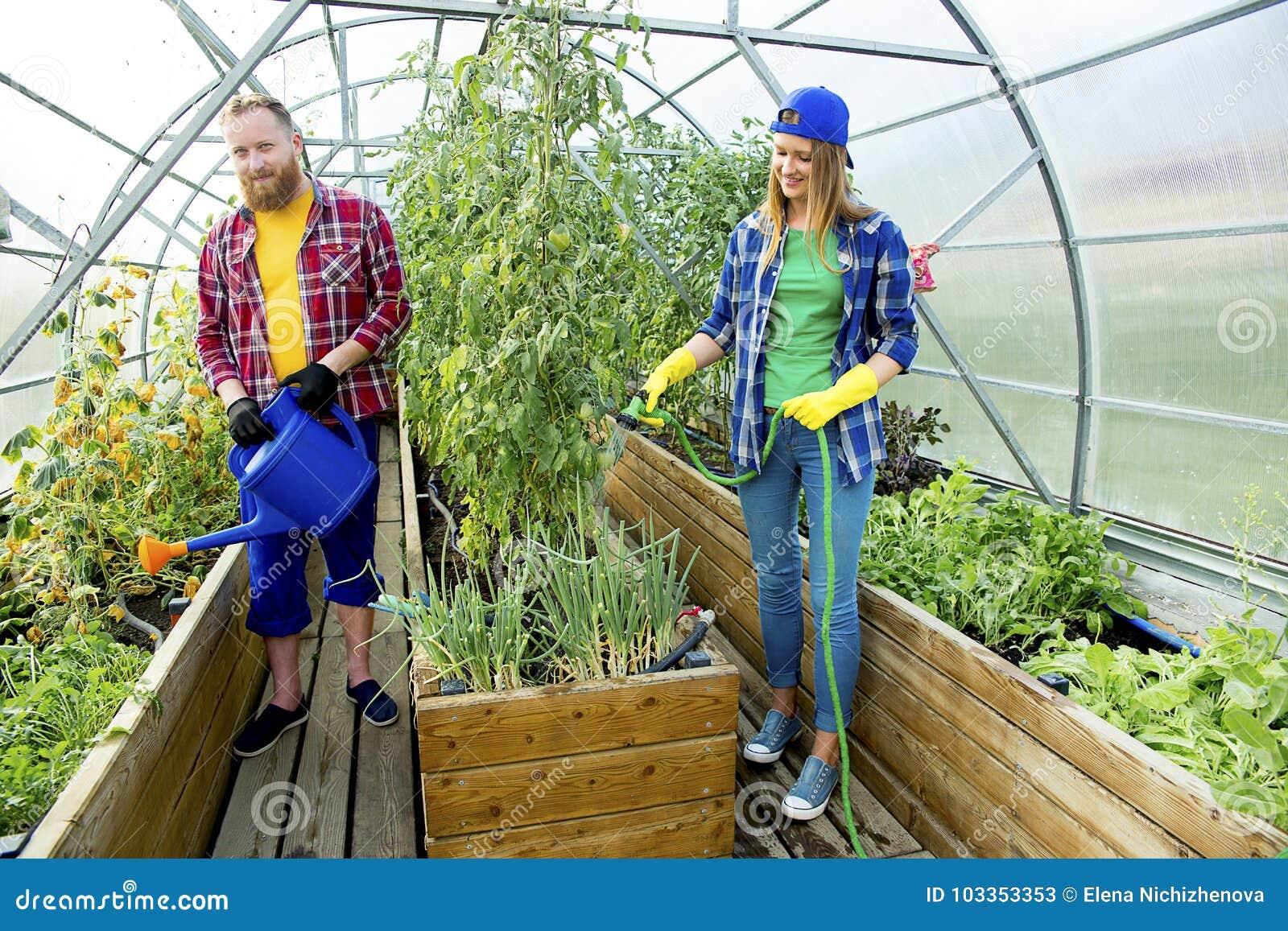 Jardinage heureux de couples