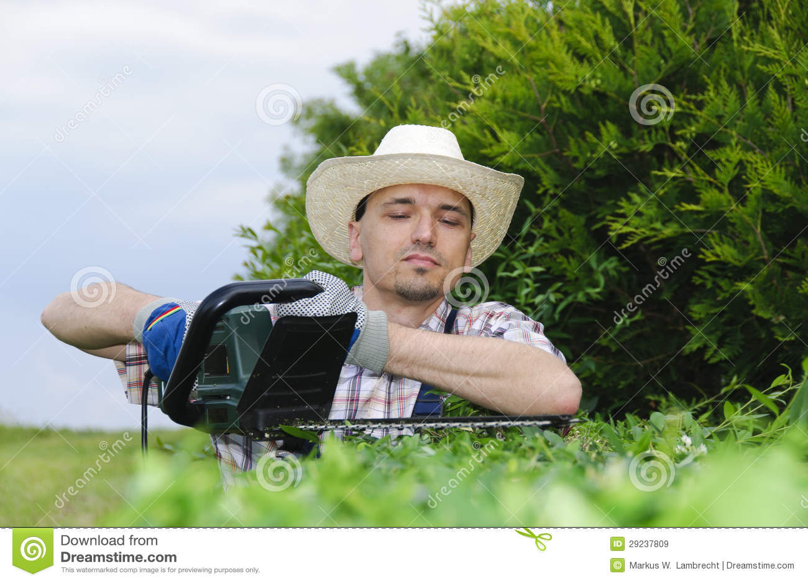 Download Jardinagem, Cortando A Conversão Imagem de Stock - Imagem de cerca, lazer: 29237809