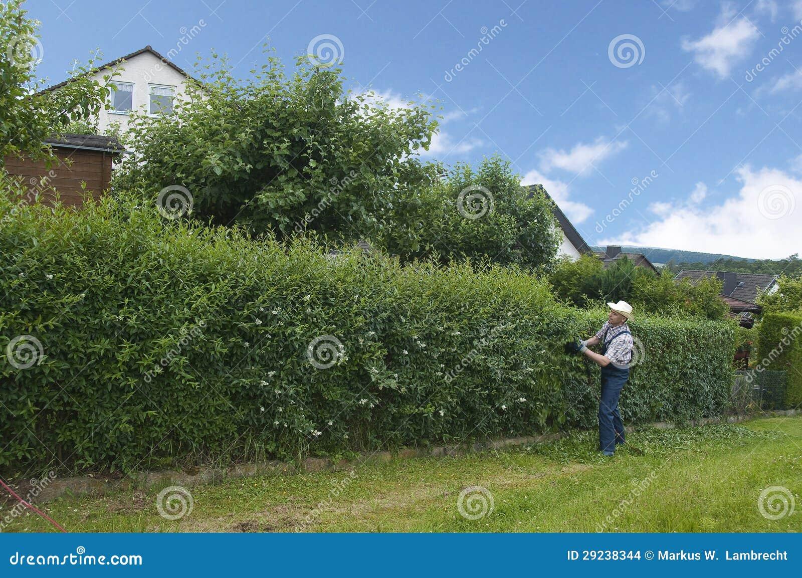 Download Jardinagem, Cortando A Conversão Foto de Stock - Imagem de corte, chapéu: 29238344