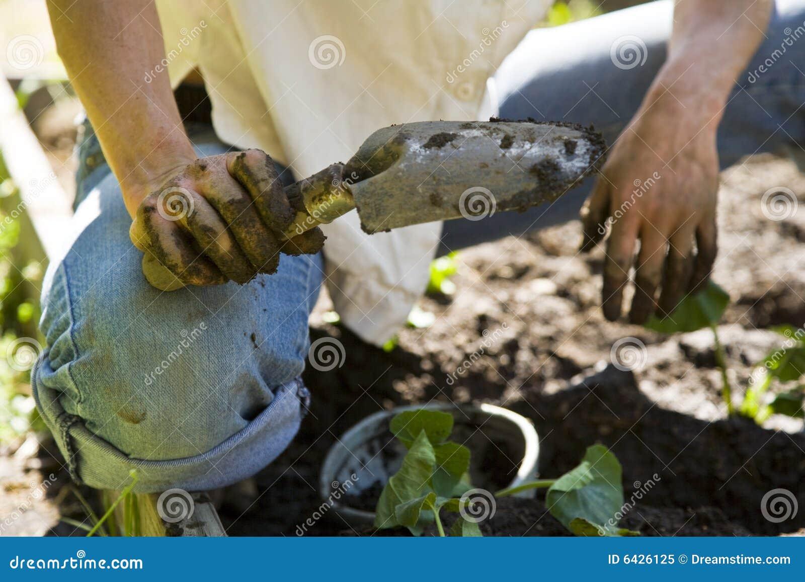 Jardinagem da mulher nova.