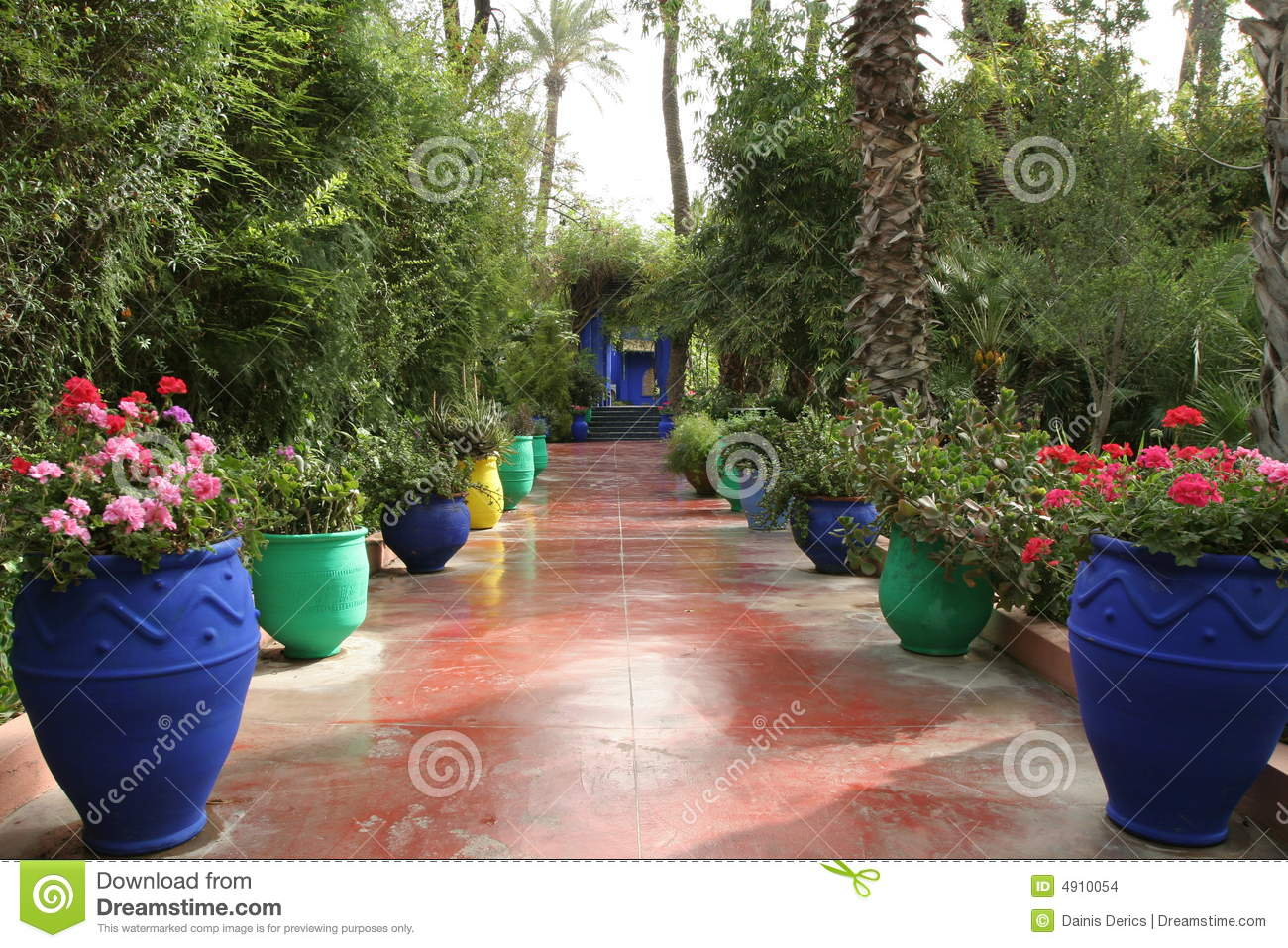 Jardine majorelle stock photo image of jardine africa for Jardin jardine