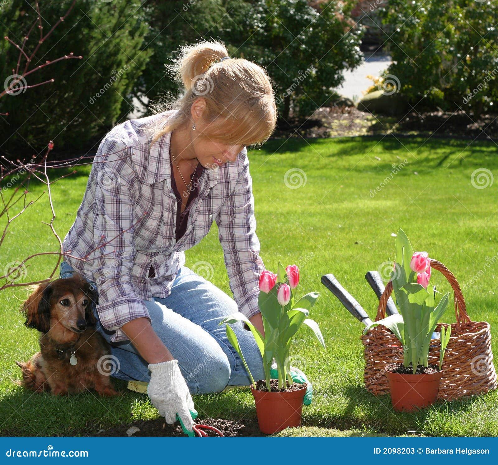 Jardineiro bonito
