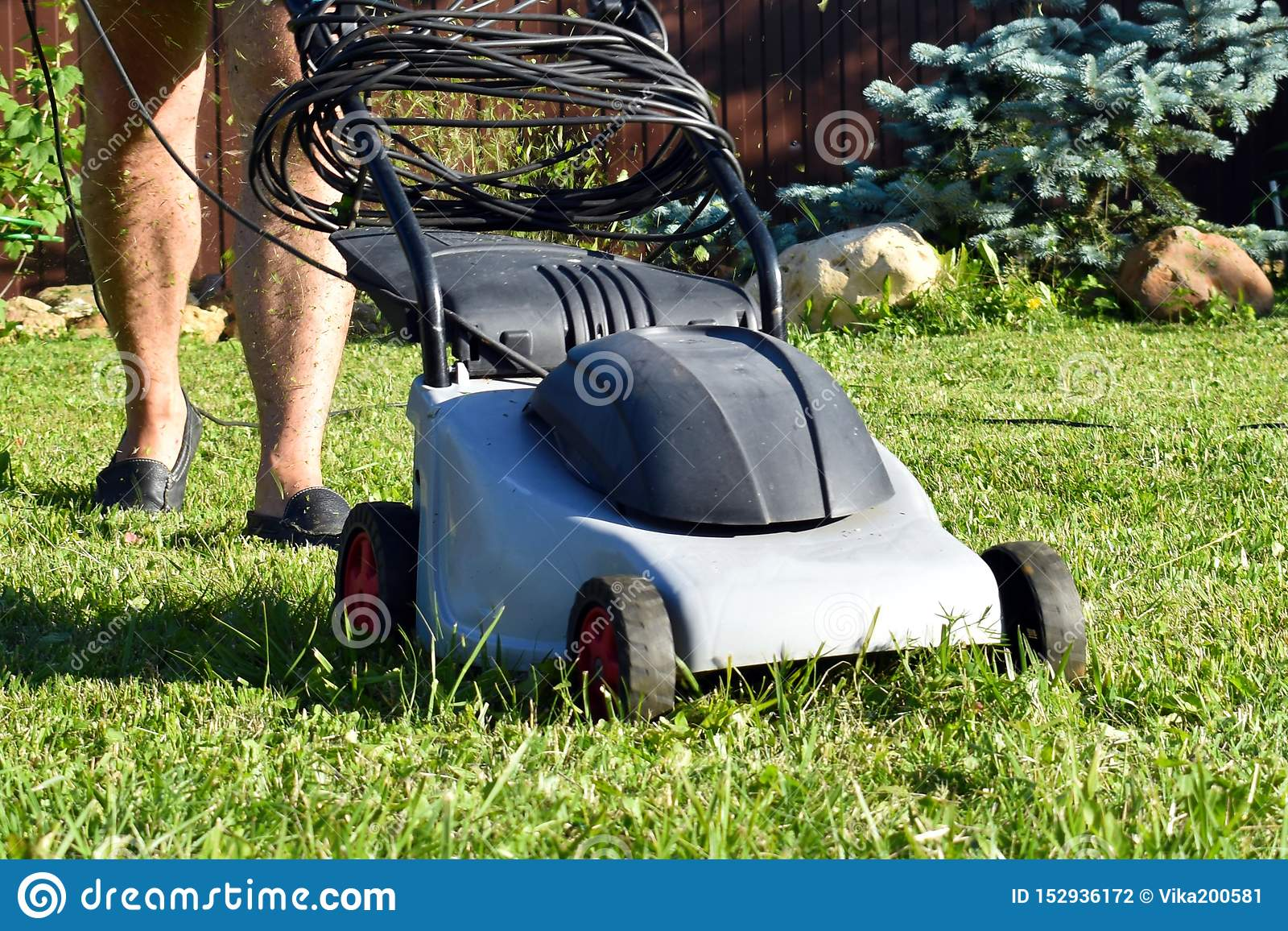 Jardineiro com a eletricista-segadeira Cortador de grama de trabalho com grama no jardim