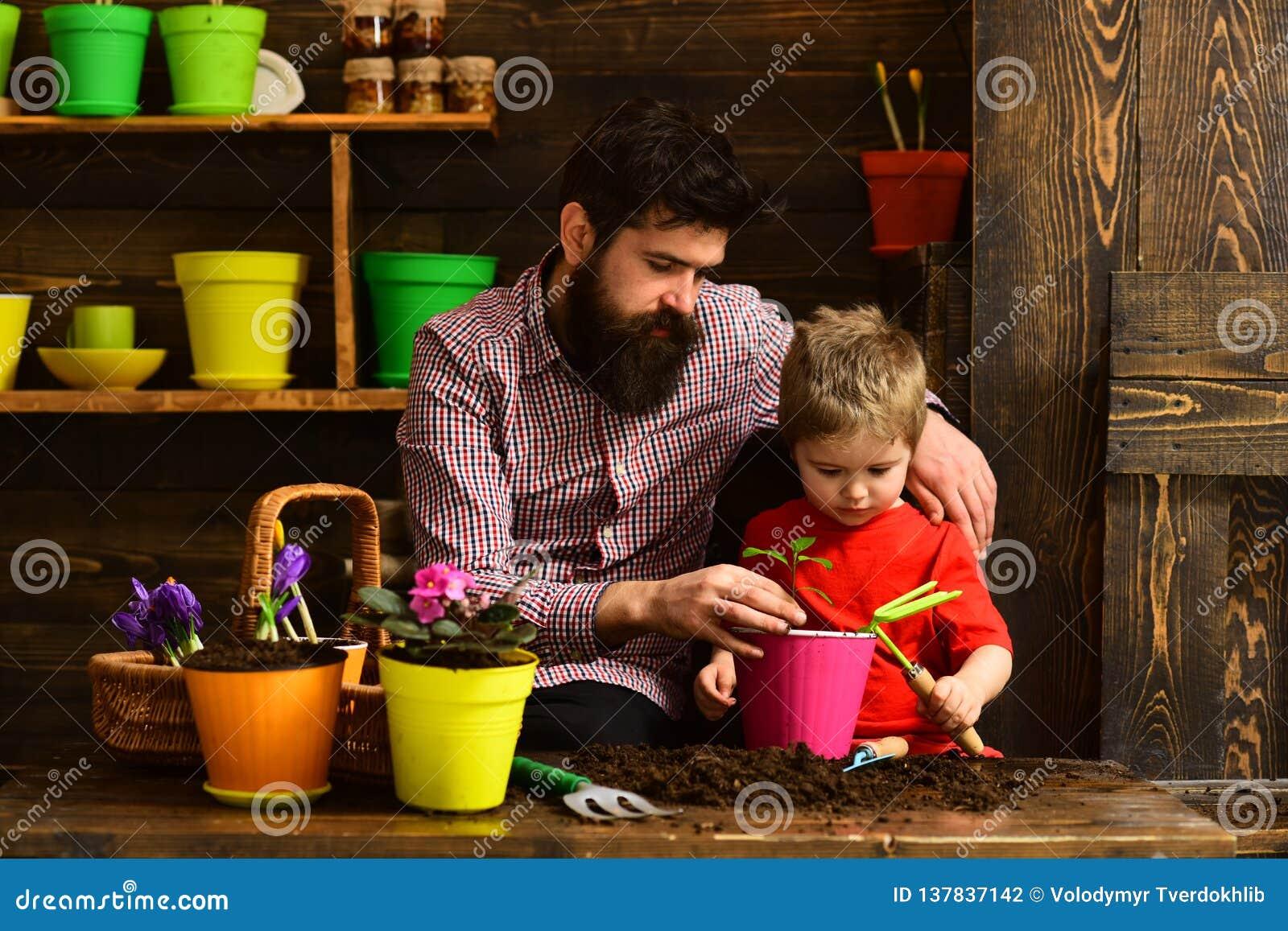 Jardineiro felizes com flores da mola Dia da família estufa Molhar do cuidado da flor Adubos do solo Pai e filho