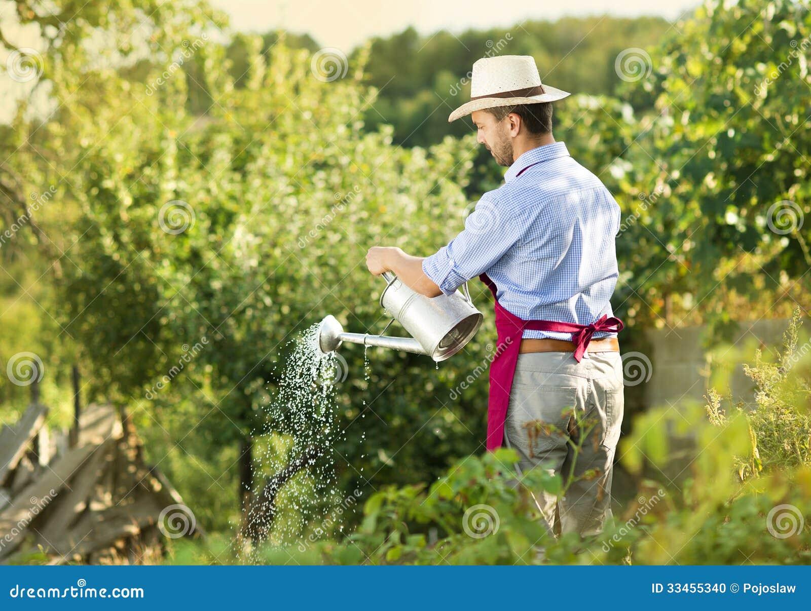Jardinero foto de archivo imagen de trabajo florist - Trabajo de jardinero en madrid ...
