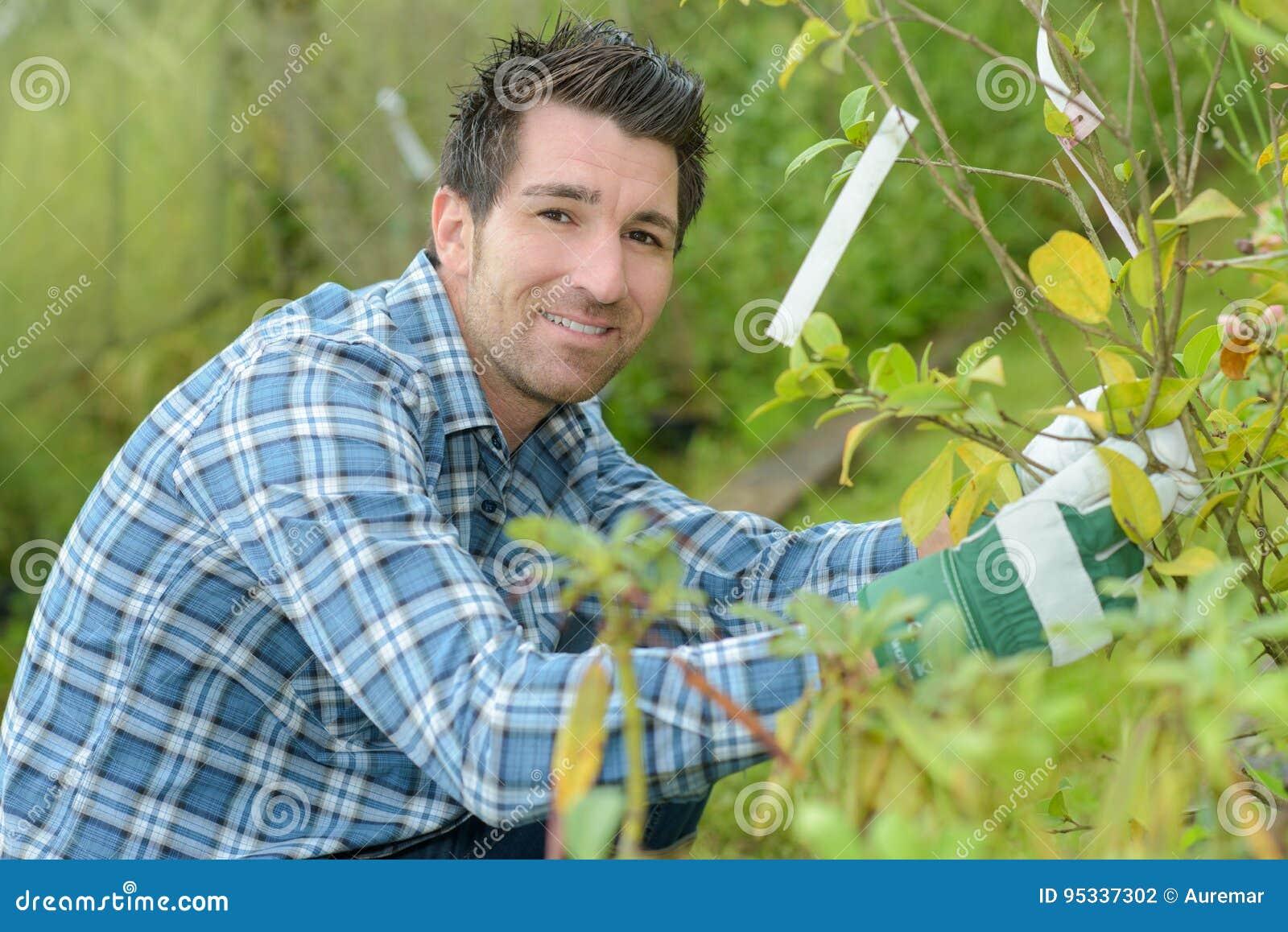 Jardinero Hermoso Del Hombre Joven Que Ajardina Y Que Toma ...