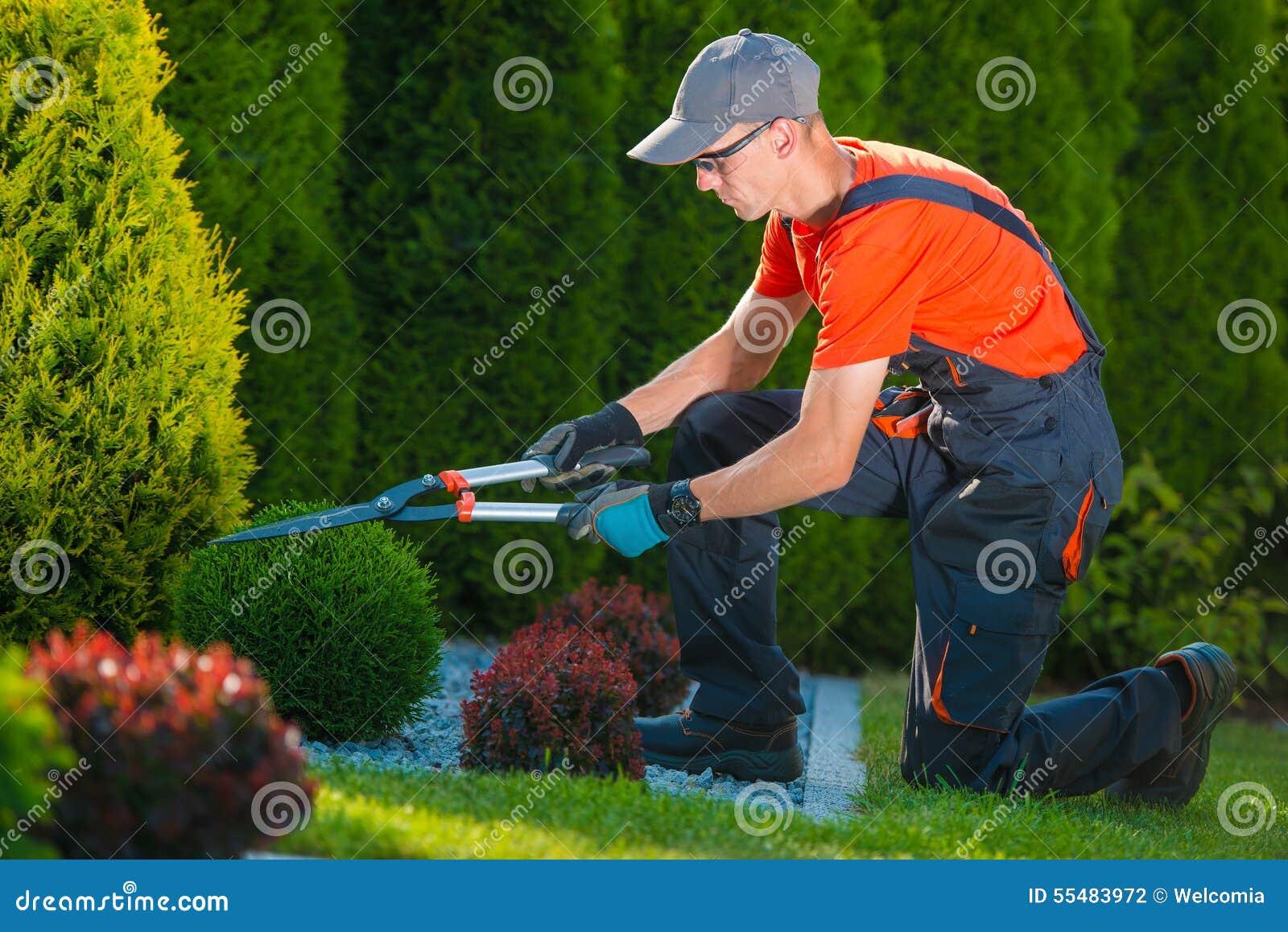 jardinero profesional en el trabajo foto de archivo