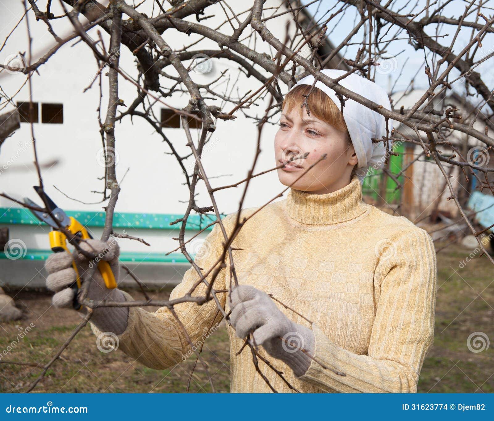 Jardinero que hace el trabajo de mantenimiento imagenes de for Trabajo jardinero