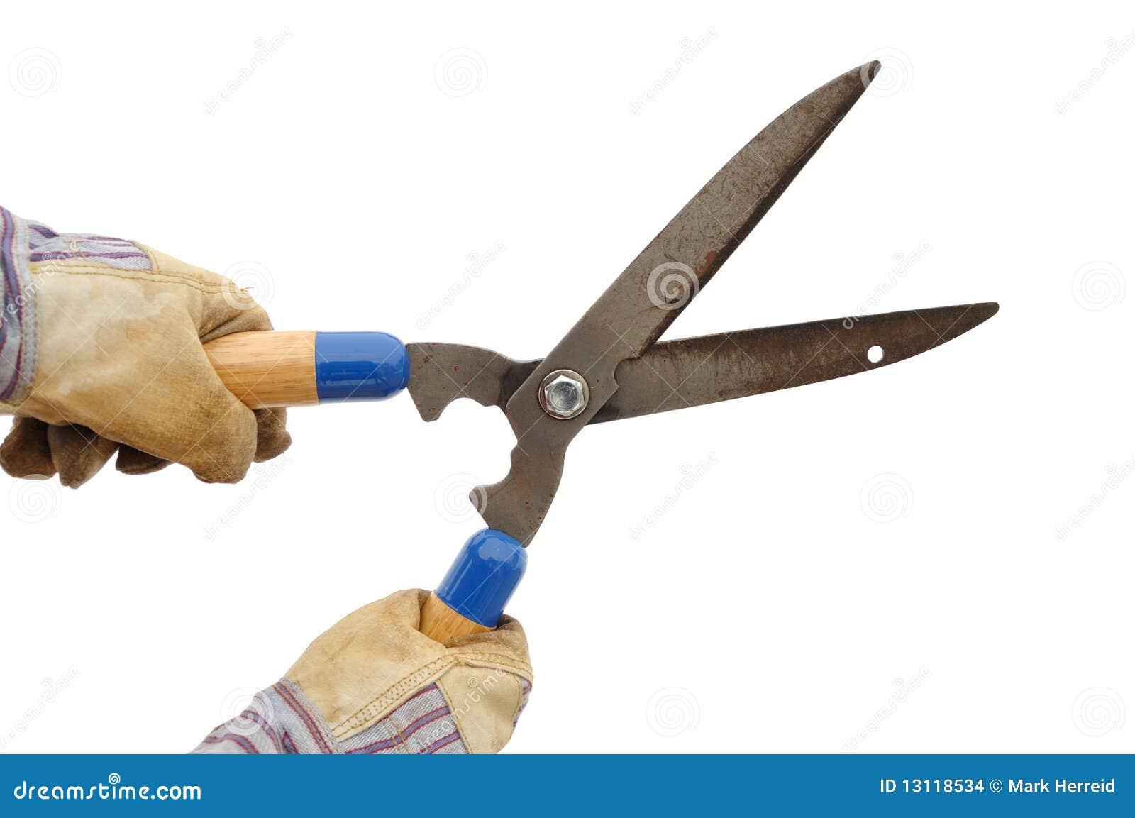 Jardinero que sostiene un condensador de ajuste de seto for Trabajo jardinero barcelona
