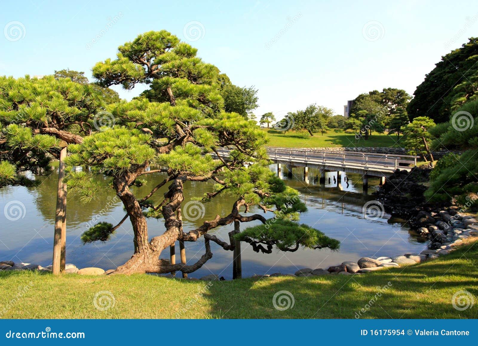 Jardines de hamarikyu en tokio jap n - Jardines de japon ...