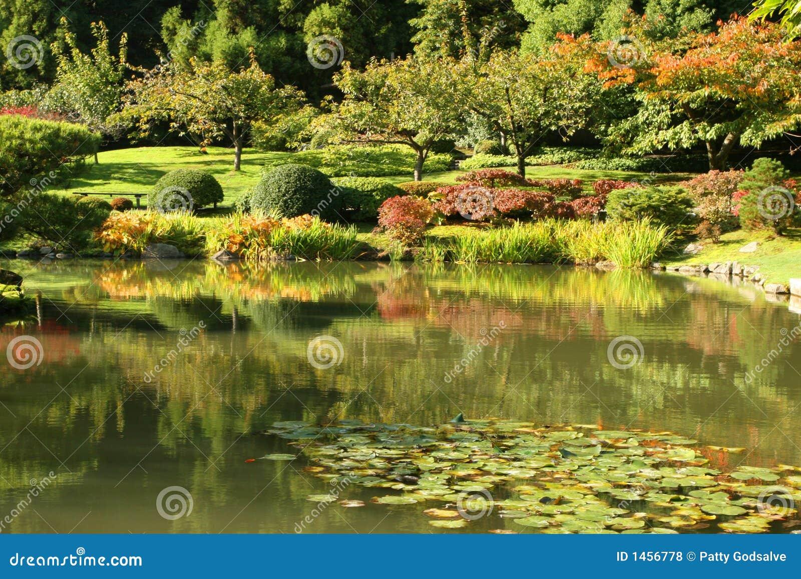 Jardines japoneses fotos de archivo libres de regal as - Fotos jardines japoneses ...