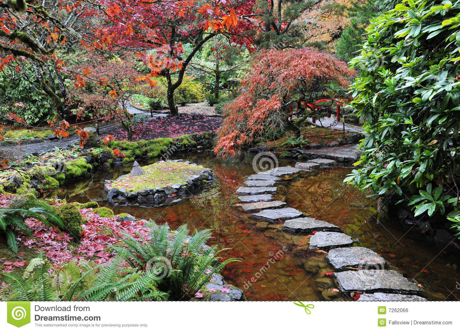 Jardines japoneses foto de archivo imagen de colorido for Plantas para jardin japones