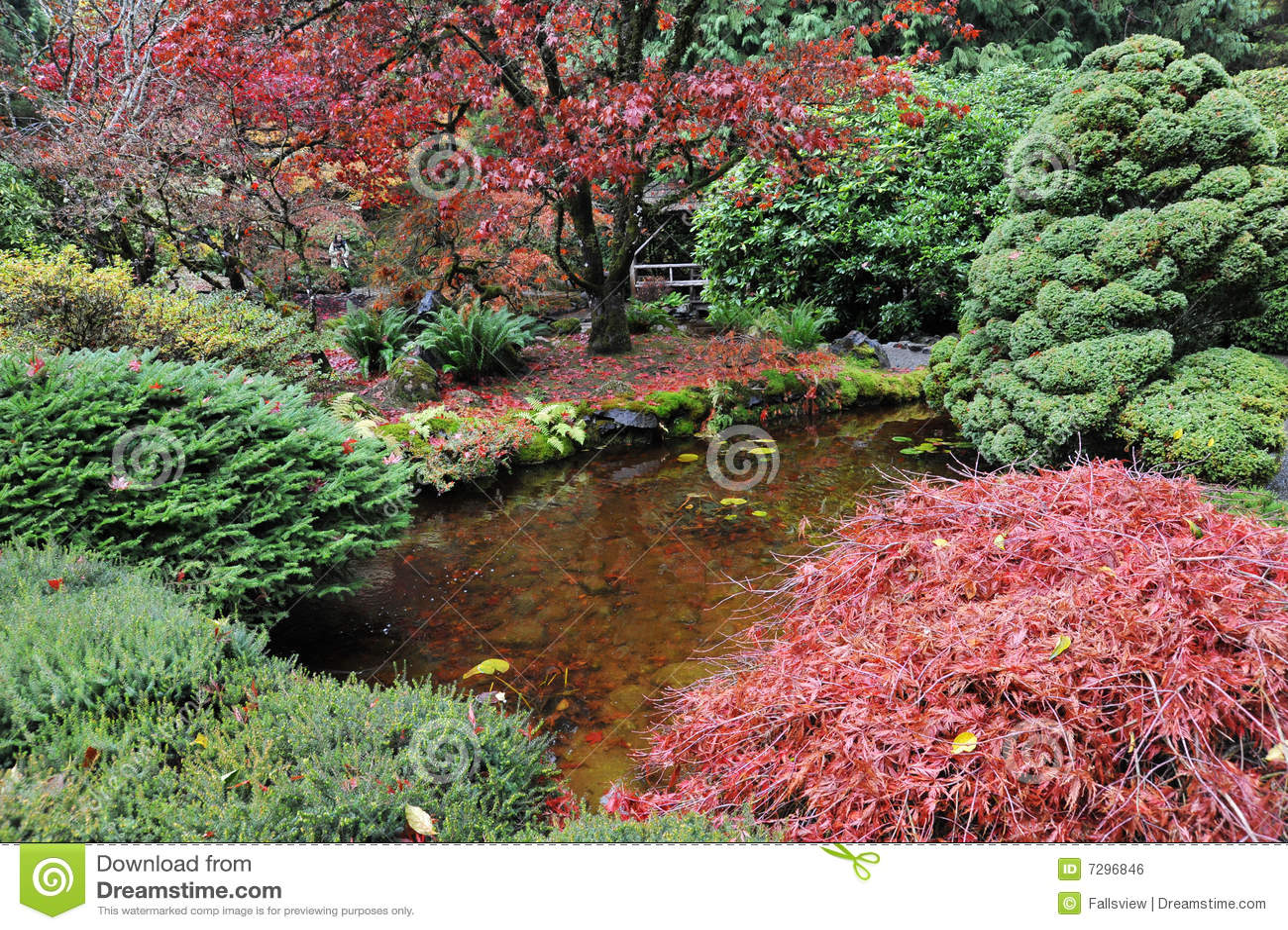 Jardines japoneses foto de archivo imagen de flor paisaje 7296846 - Fotos jardines japoneses ...