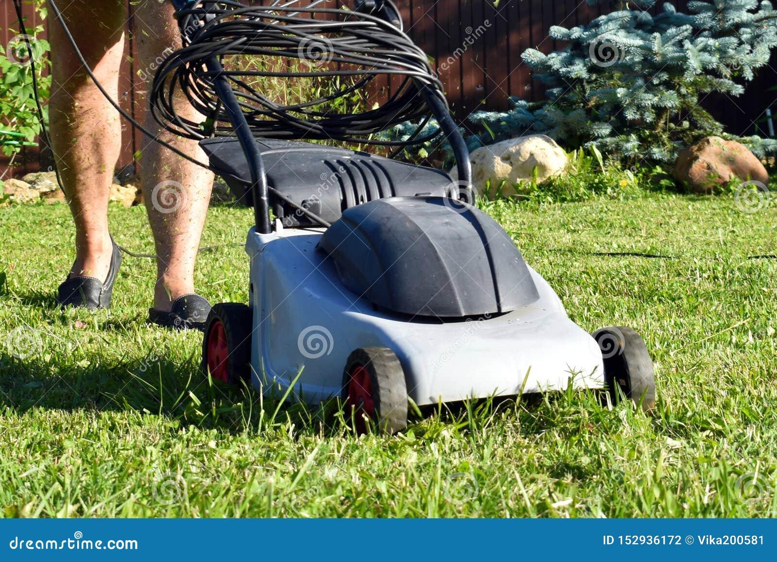 Jardinier avec l électricien-faucheuse Tondeuse à gazon fonctionnante avec l herbe dans le jardin