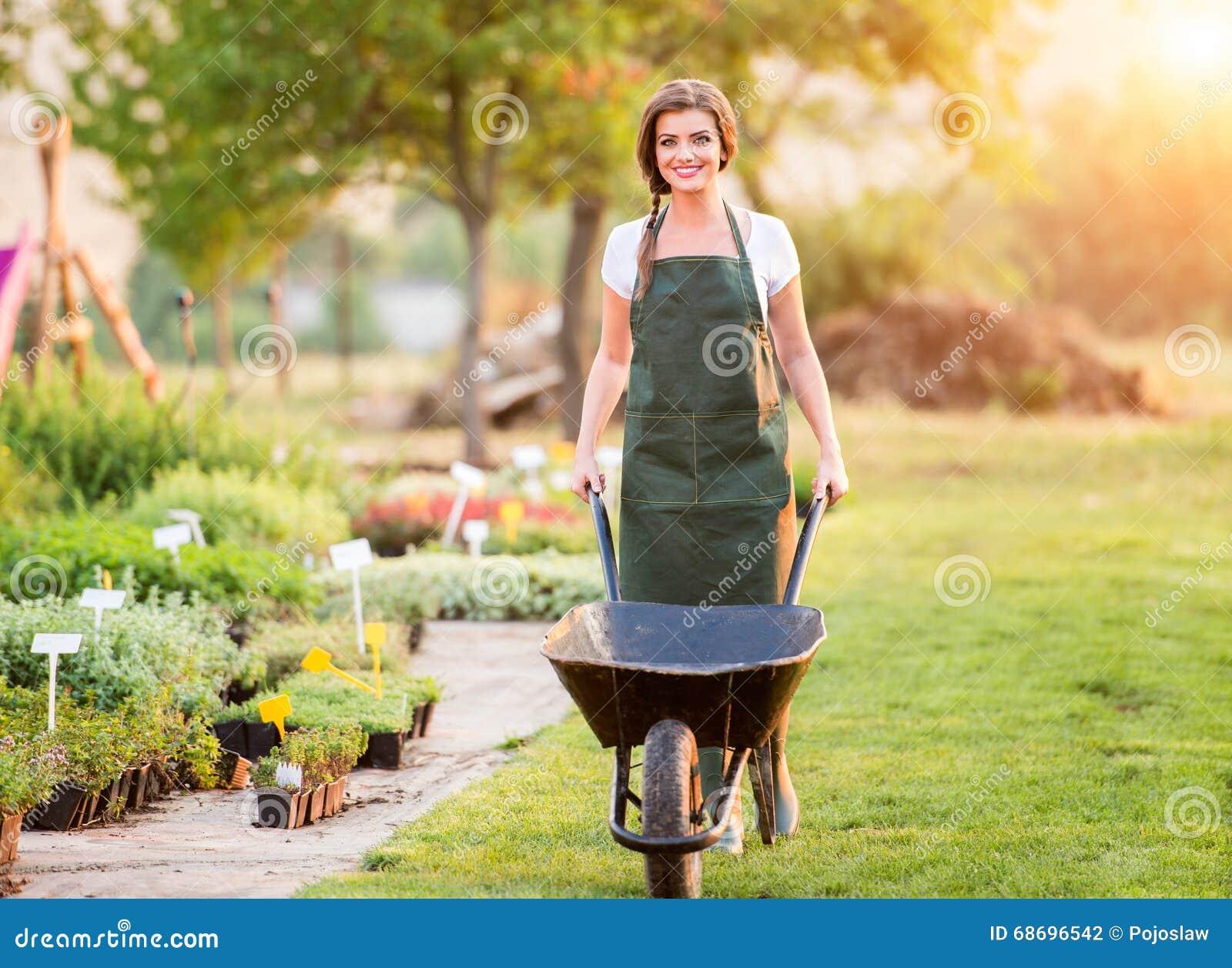 Jardinier avec la brouette fonctionnant dans l arrière cour, nature ensoleillée