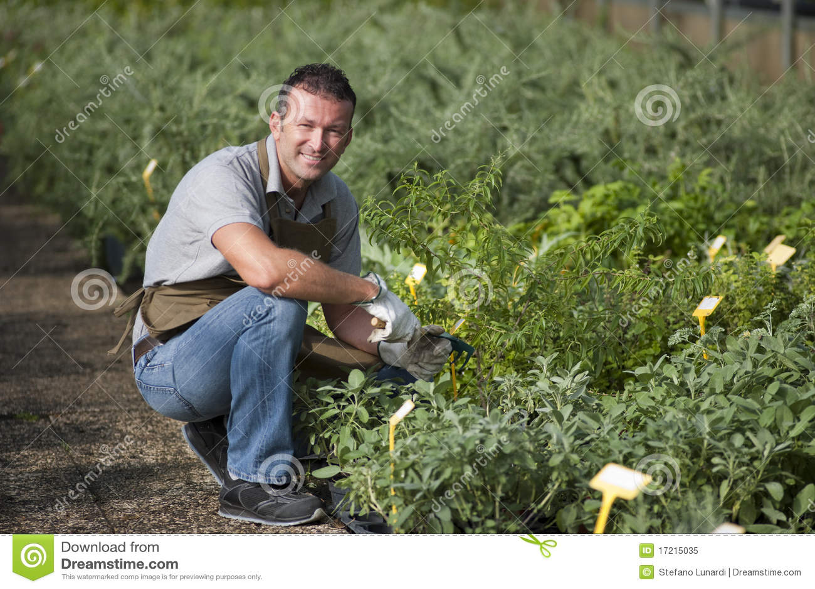 Jardinier de sourire
