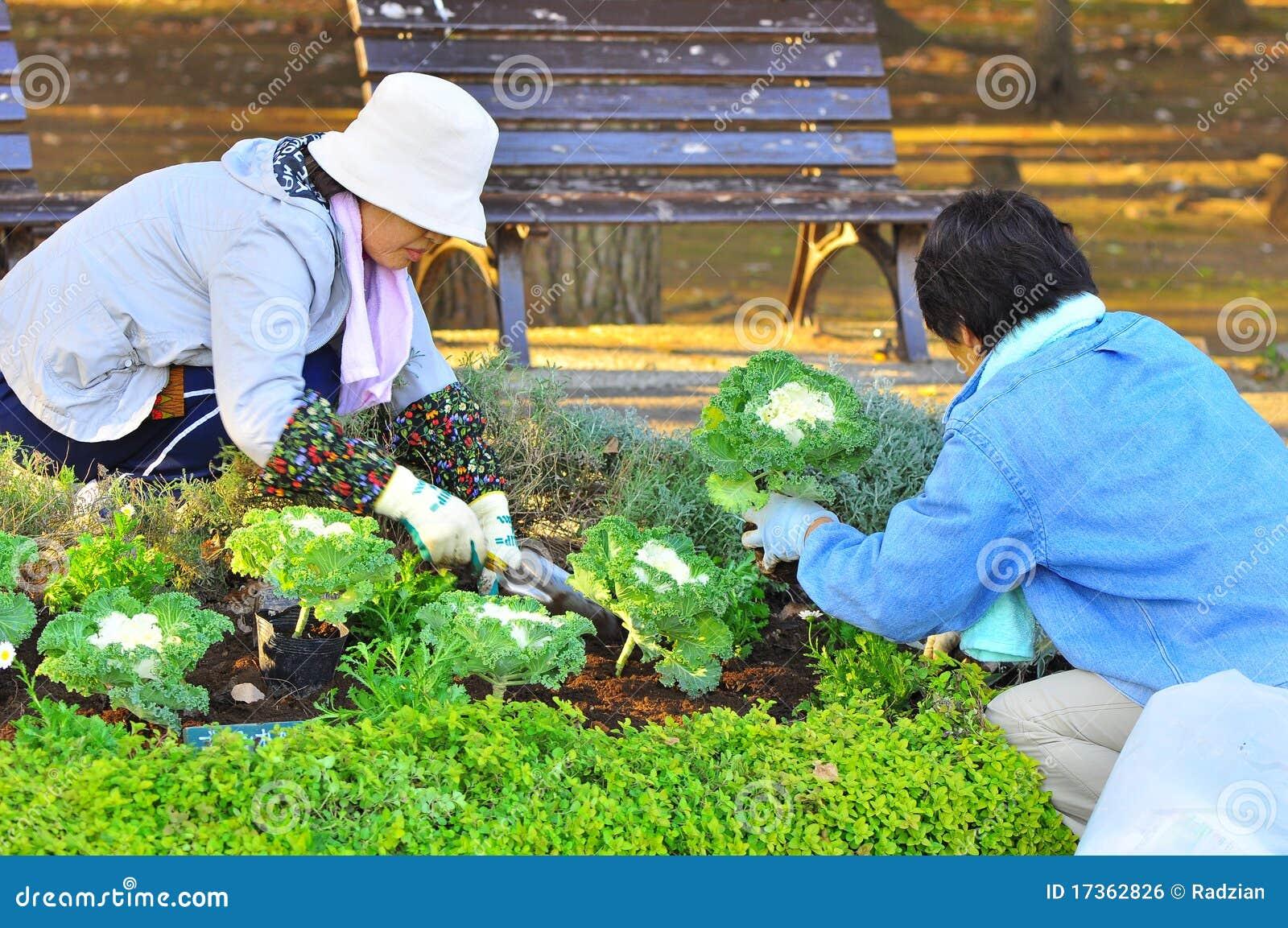Jardinier japonais photo ditorial image 17362826 for Jardinier conseil